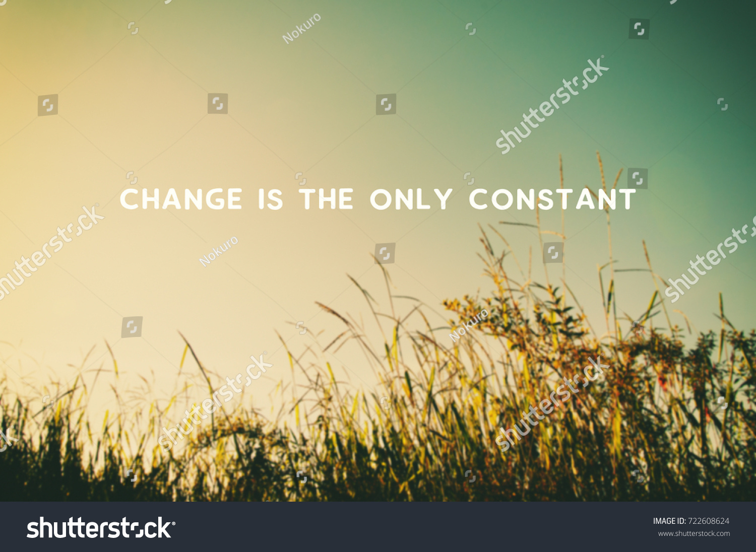 Life Changes Quotes Inspirational Life Motivational Inspirational Quotes Changes Only Stock Photo