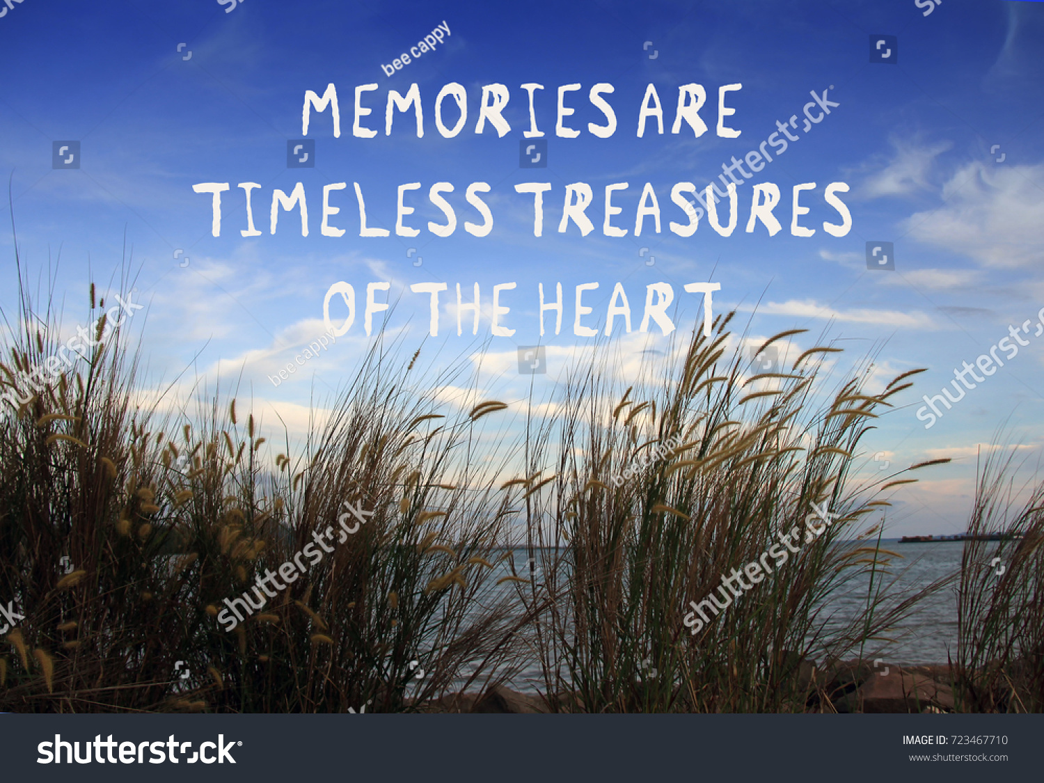 Quotes About Landscape Inspirational Quotes Memories Timeless Treasures Heart Stock Photo