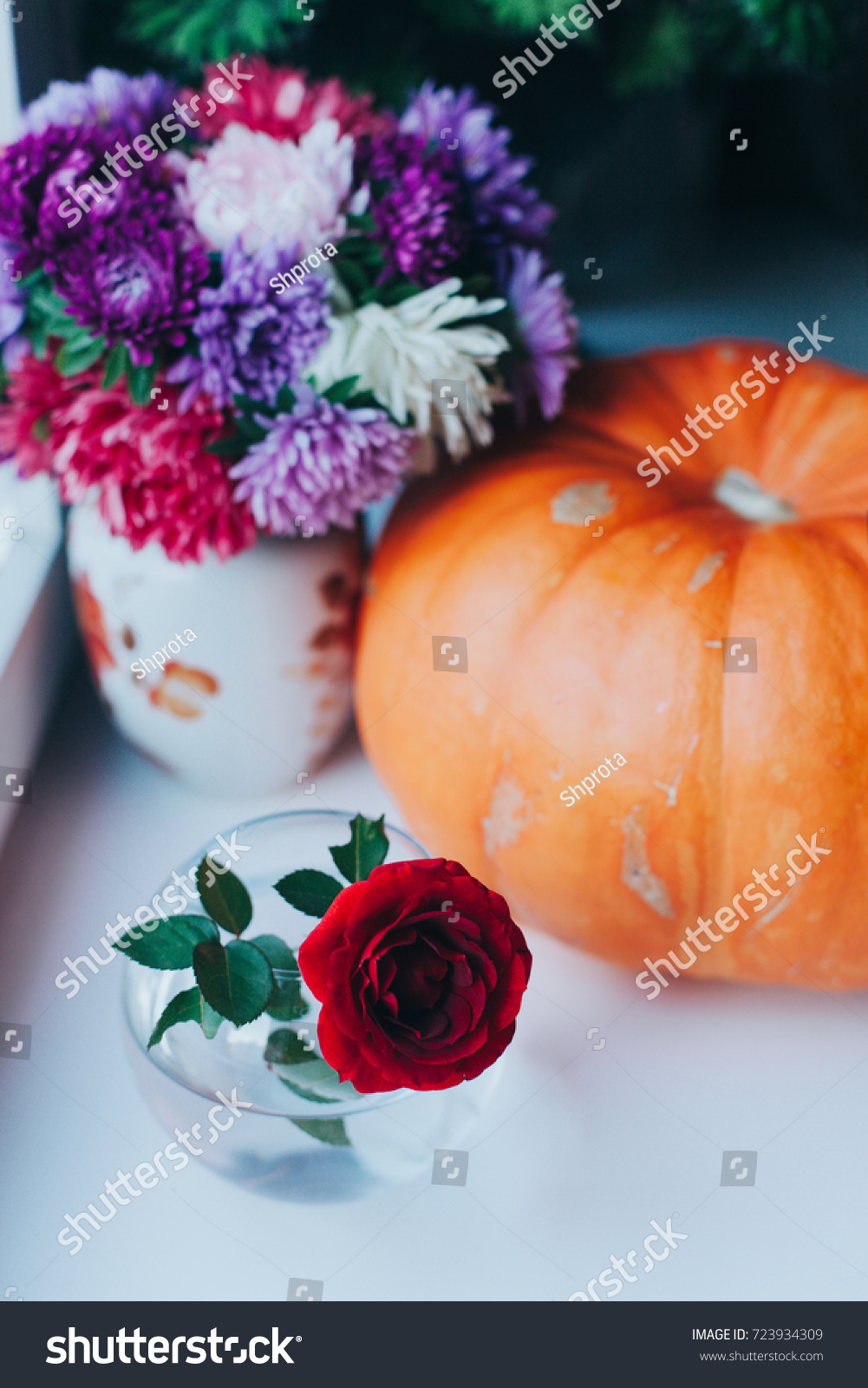 Ripe Orange Pumpkin Beautiful Fall Flowers Stock Photo Edit Now