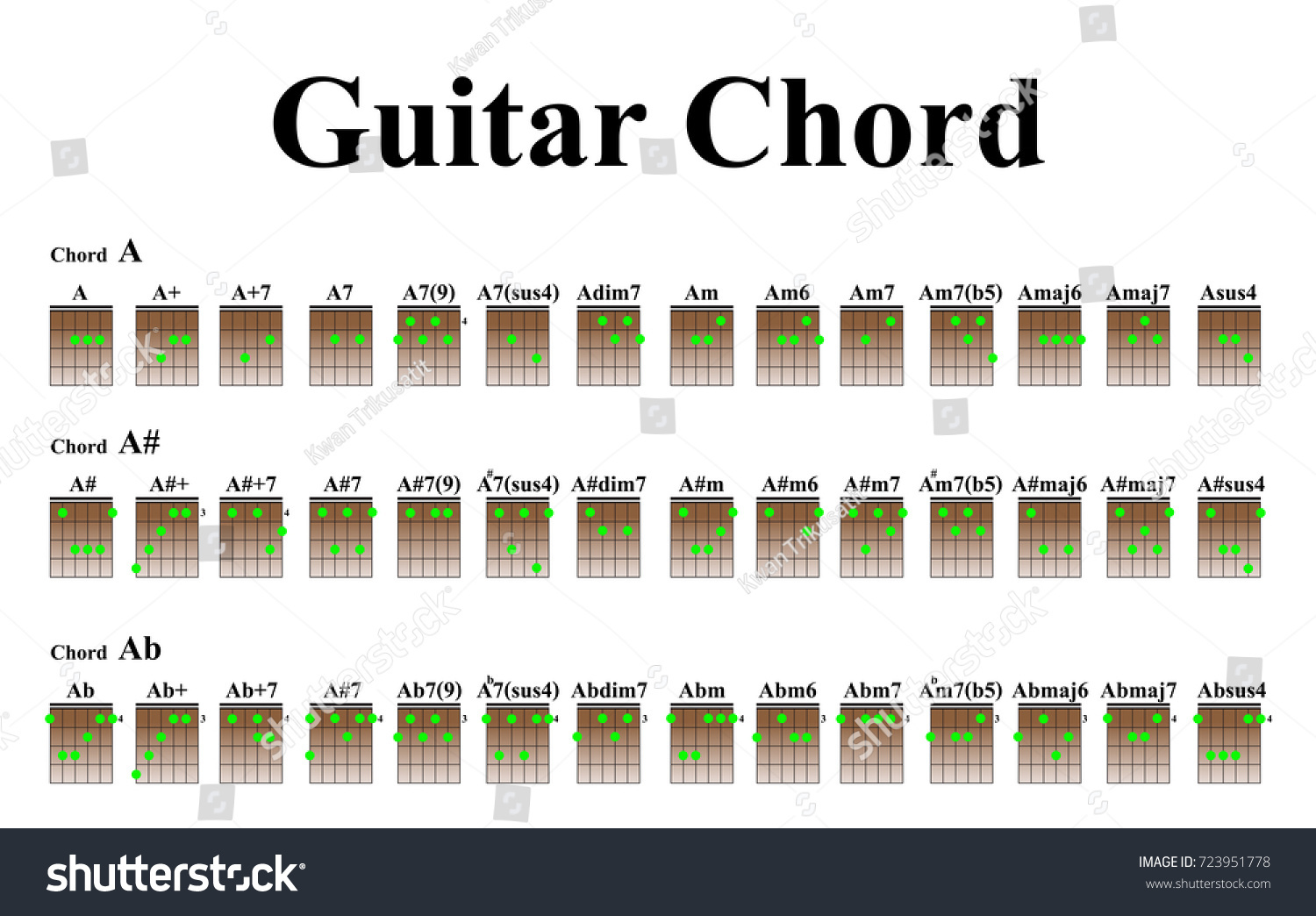 Guitar Chords Beginners Stock Vector Royalty Free 723951778