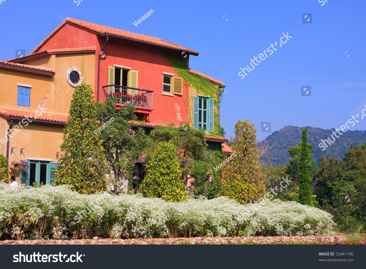 Colorful house behind trees stock photo 72441106 for Colorful tree house