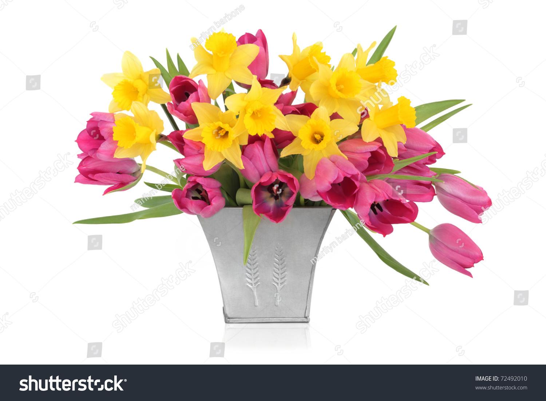 pink tulip daffodil flowers distressed aluminum stock photo