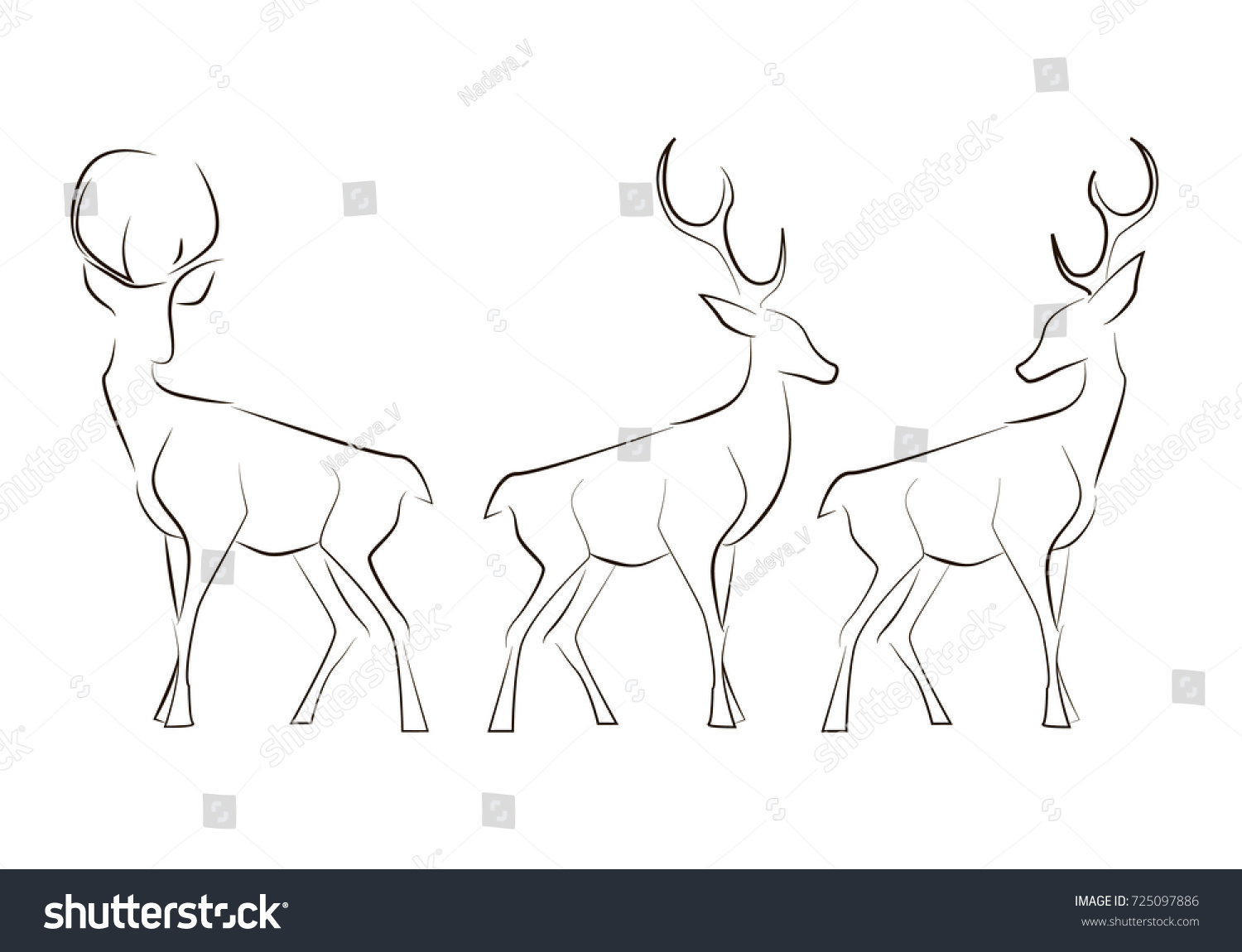 Line Drawing Vector Graphics : Standing black line deers on white stock photo vector