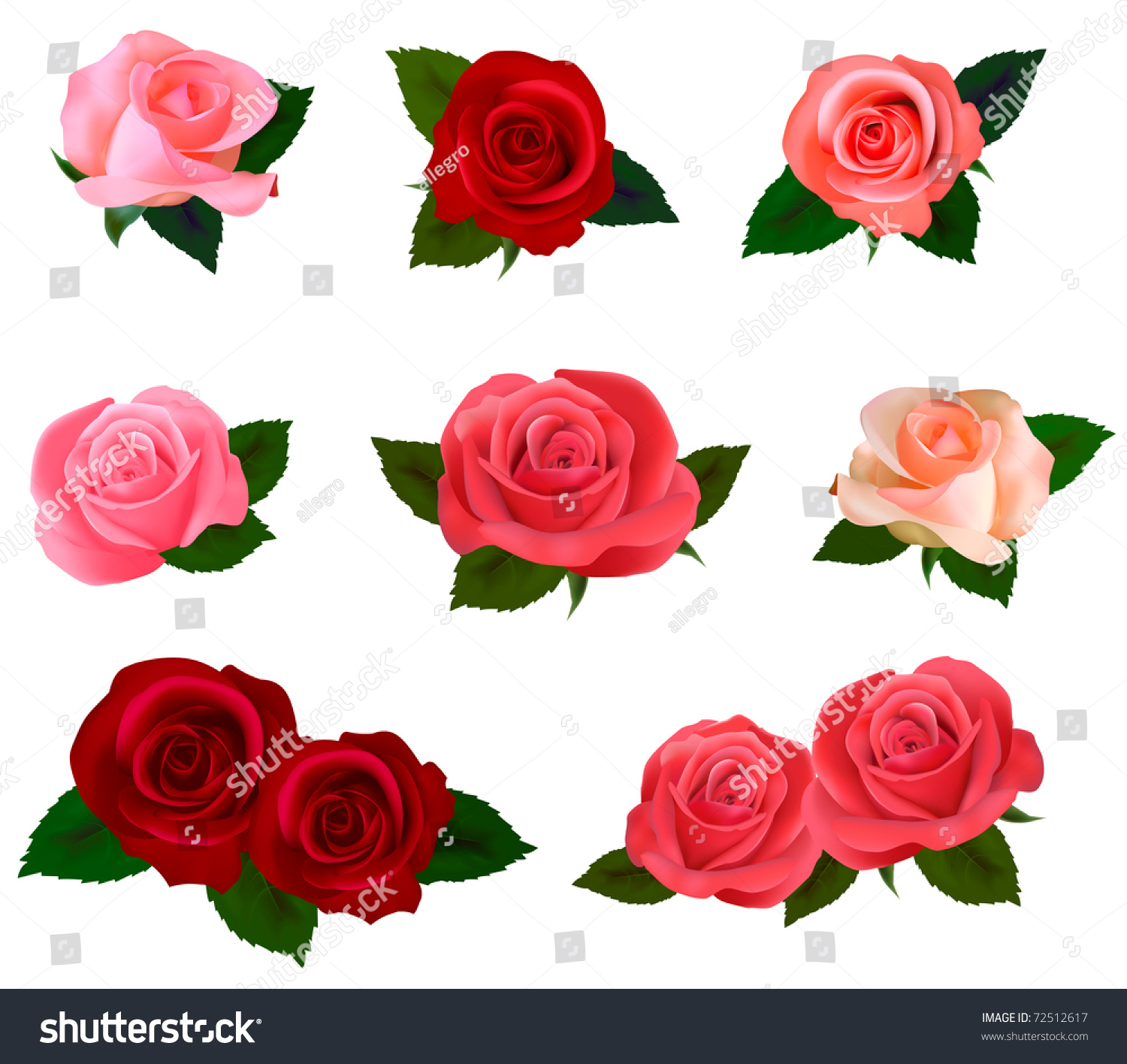 Big Set Beautiful Colored Roses Vector Stock Vector 72512617 ...
