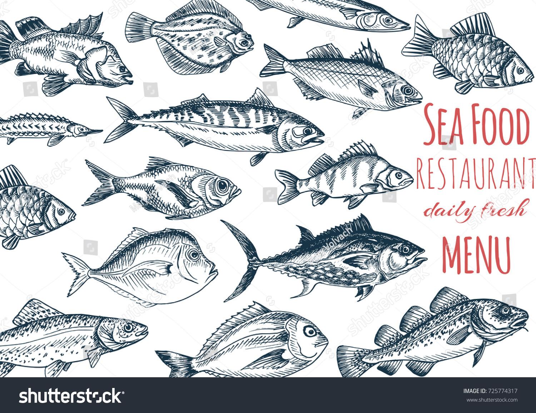 vector illustration sketch fish menu restaurant stock vector