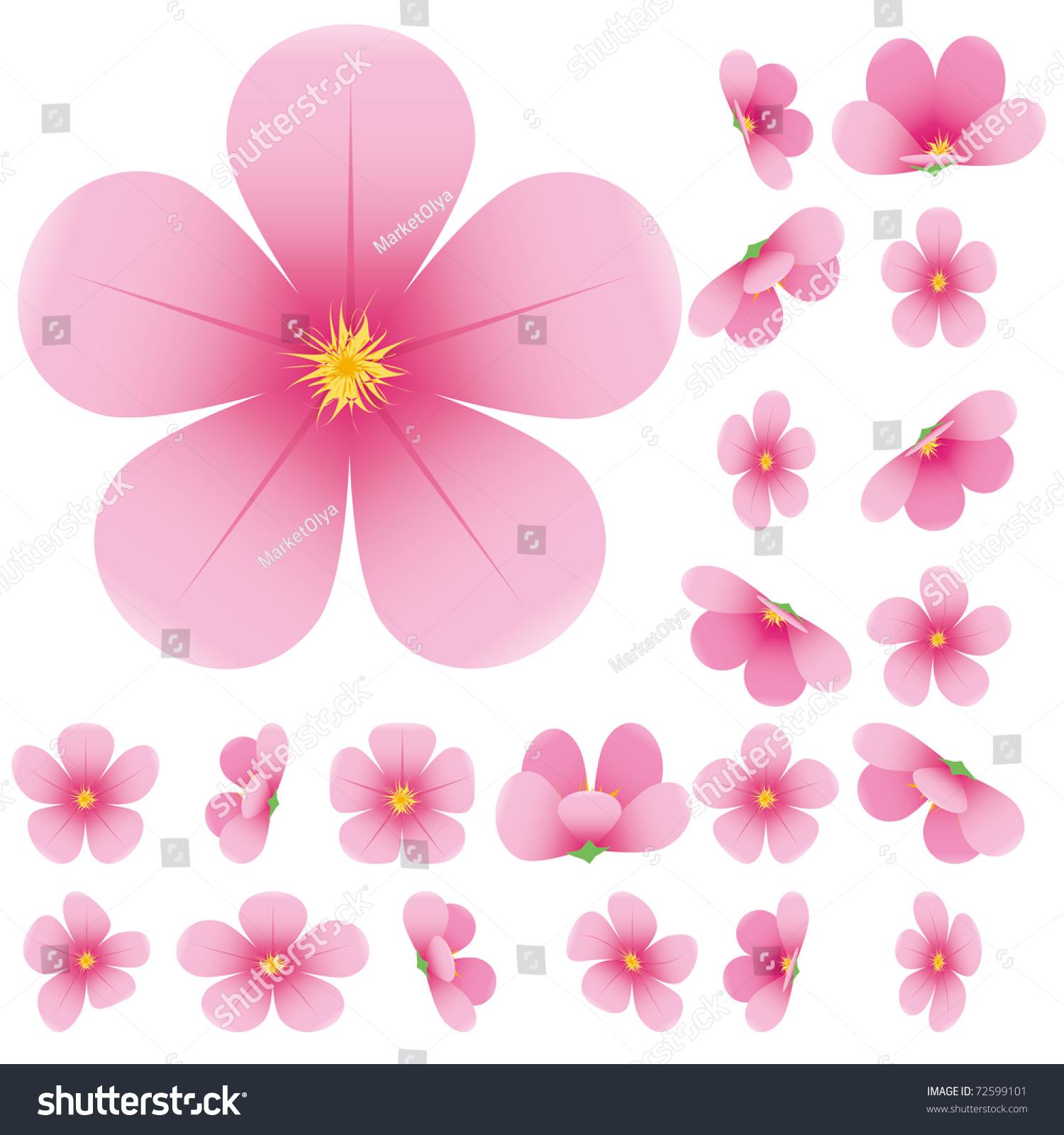Cherry blossom flowers sakura set pink stock vector royalty free cherry blossom flowers of sakura set pink flowers collectionvector illustration mightylinksfo