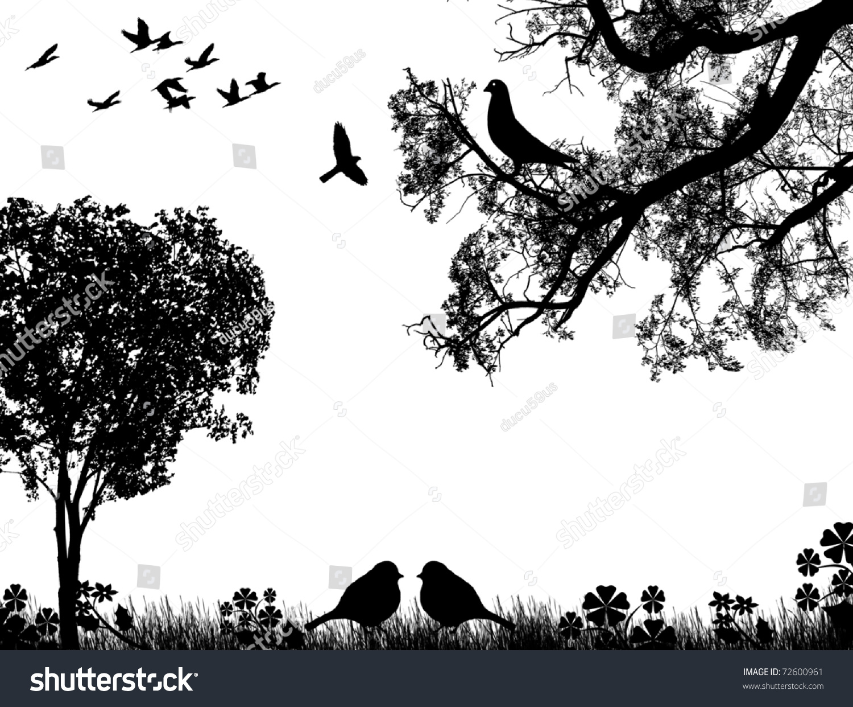 Css Background Image Black And White Birds Brazil Nut