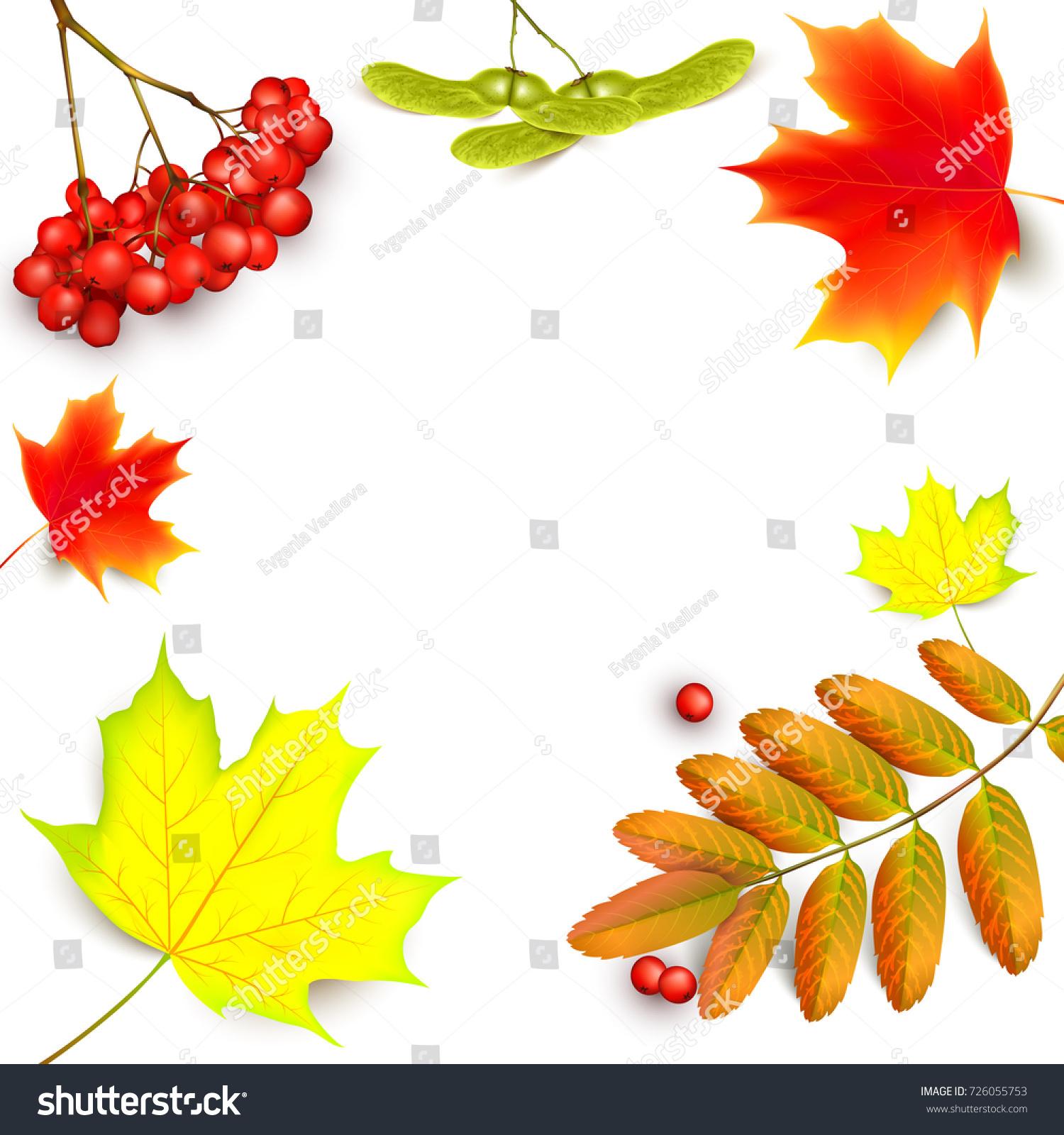 rowan banner password 28 images autumn sale 40 off circle banner stock vector 478065631