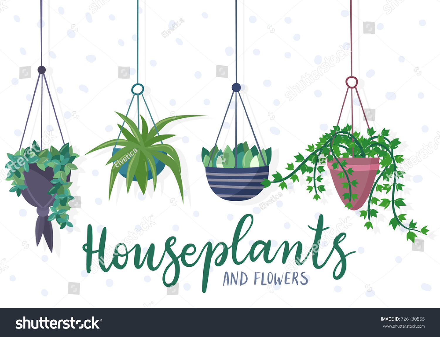 hanging house plants and flowers in pots flat cartoon style vector