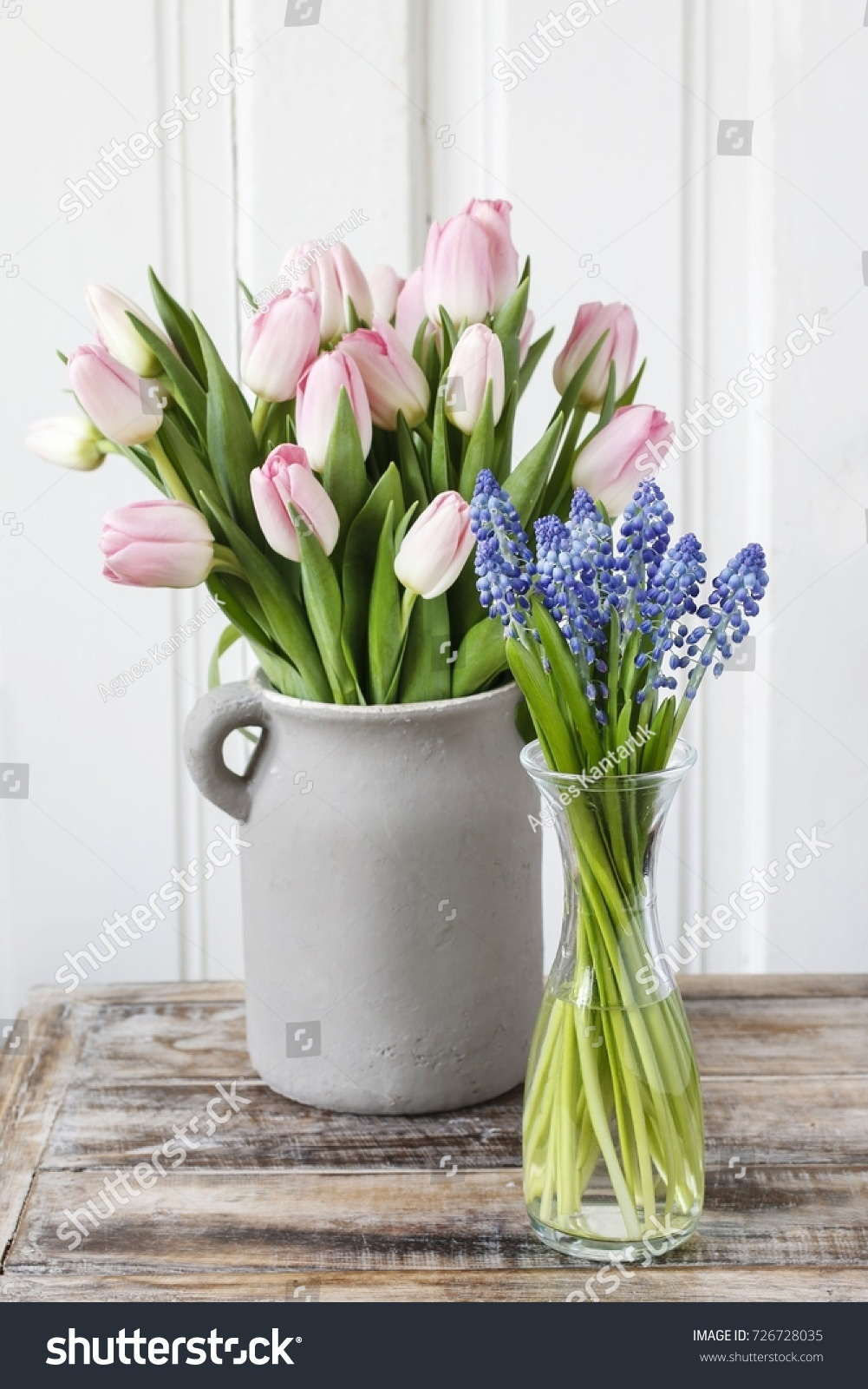 Hyacinths and Daffodils in flower pots on light background   EZ Canvas