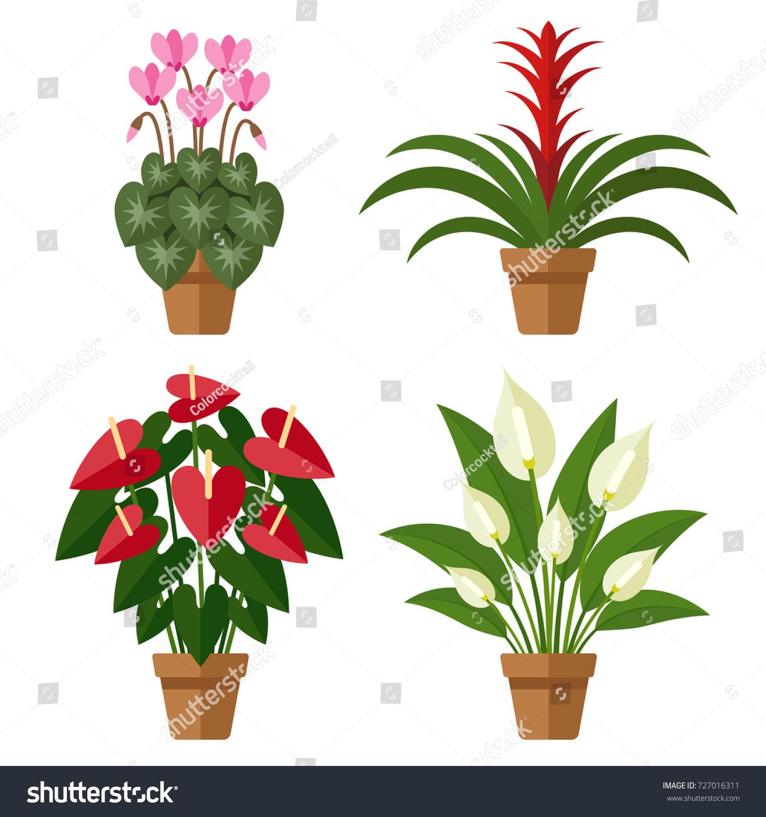Vector Set Indoor Blooming Flowers Pots Stock Vector