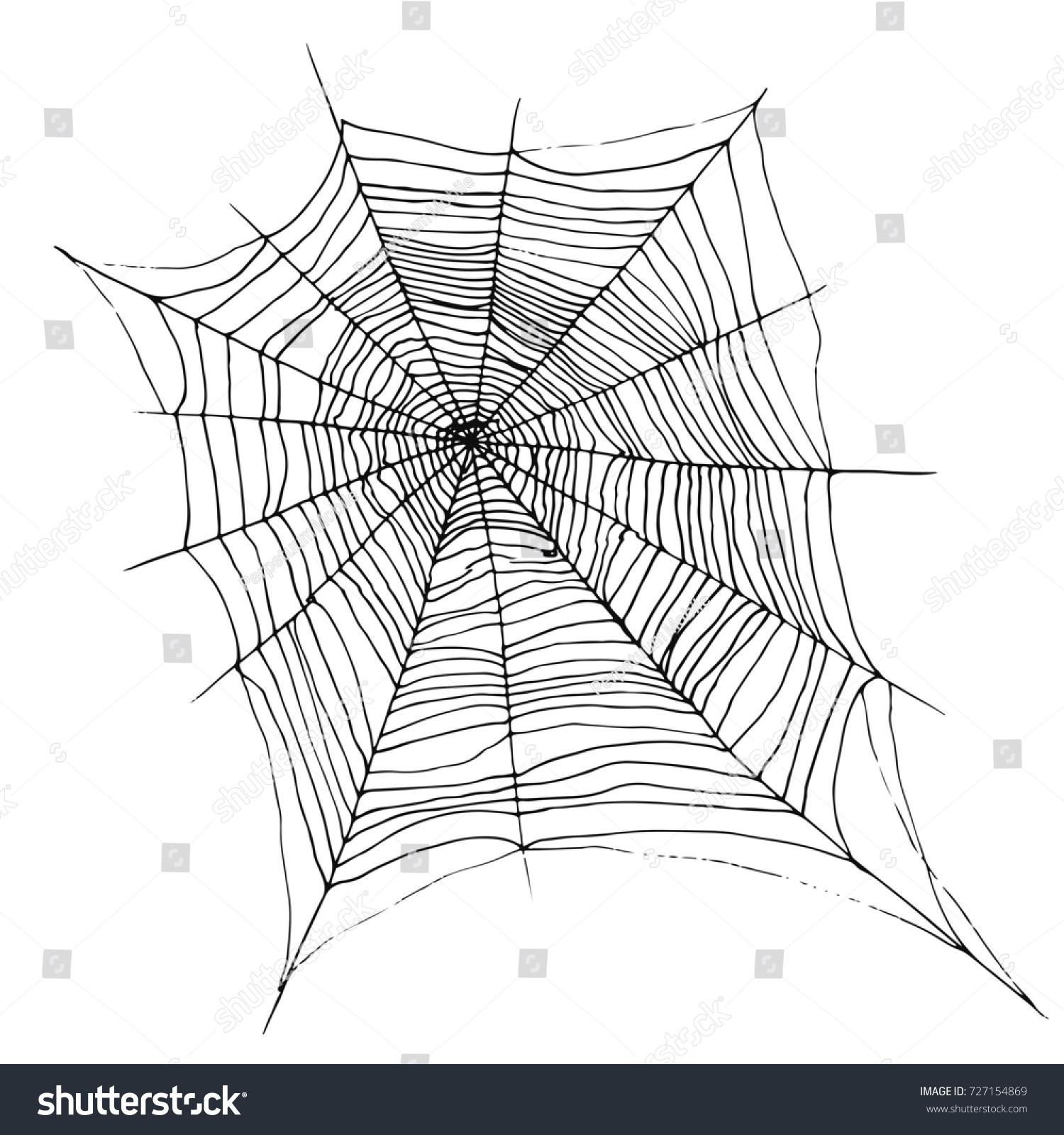 decorative beautiful spider web cartoon sketch stock illustration