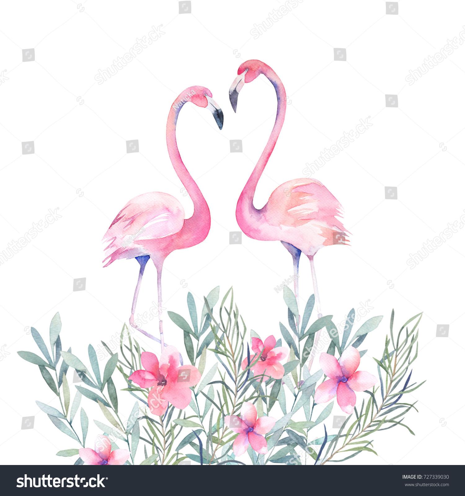 Couple Pink Flamingos Bouquet Flowers Watercolour Stock