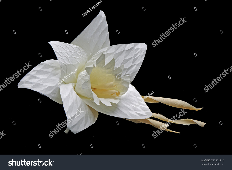 Thai Artificial Funeral Flower Dok Mai Chan Stock Photo Edit Now