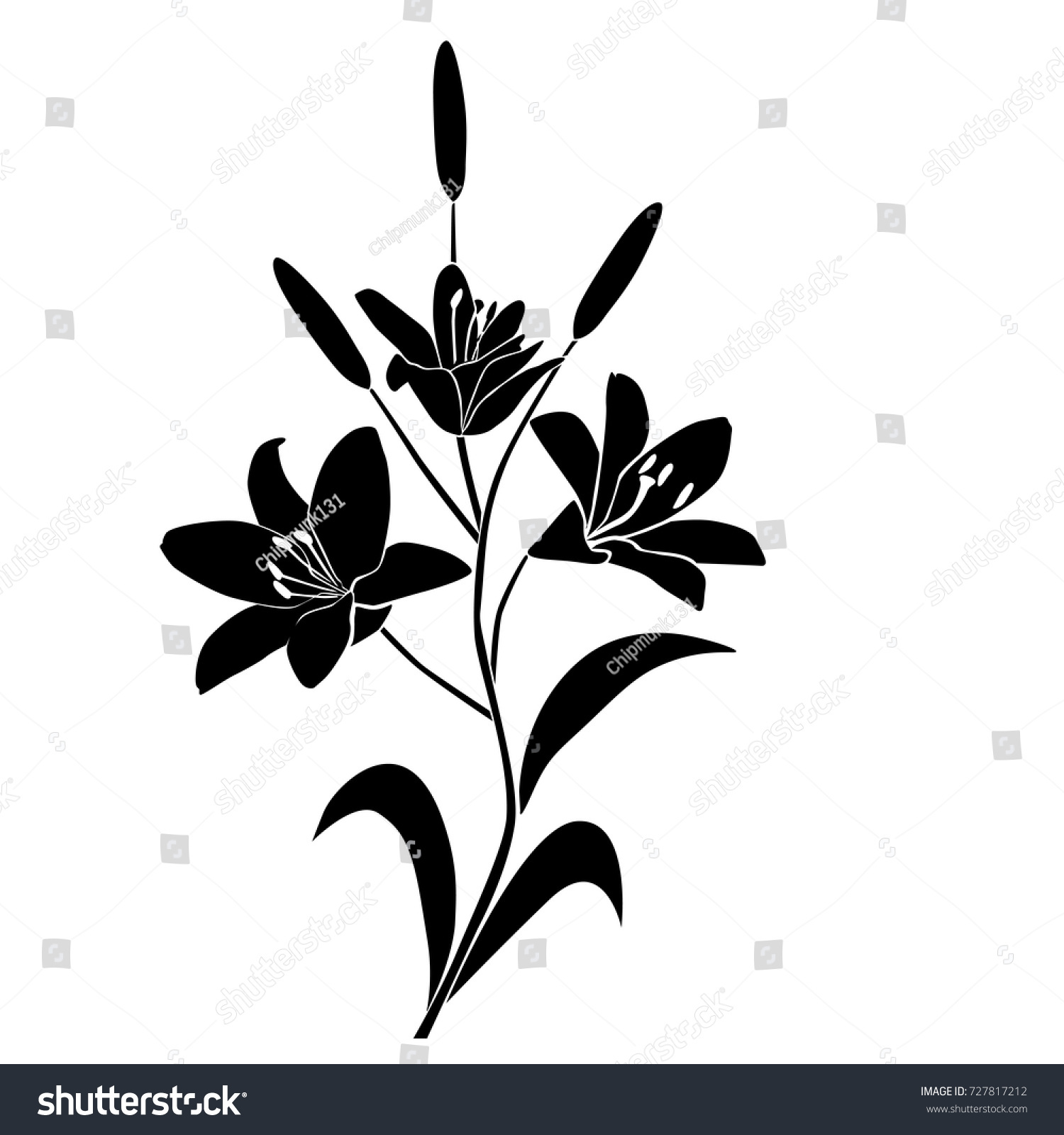 Silhouette lily flower blossom branch black stock vector 727817212 silhouette of lily flower blossom branch black color isolated on white background izmirmasajfo Choice Image
