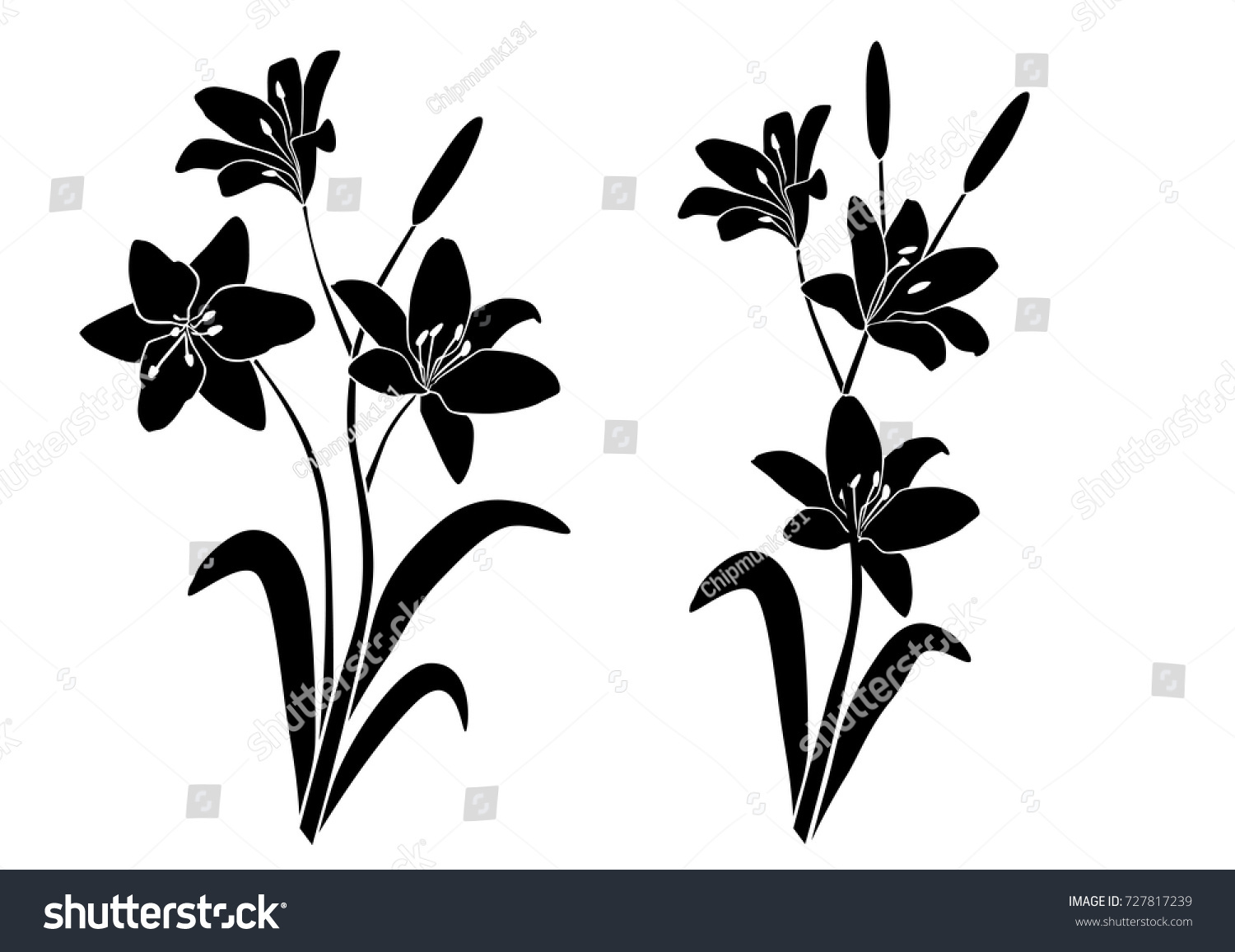 Silhouettes lily flower blossom branches vector stock vector silhouettes of lily flower blossom branches vector black color isolated on izmirmasajfo Choice Image