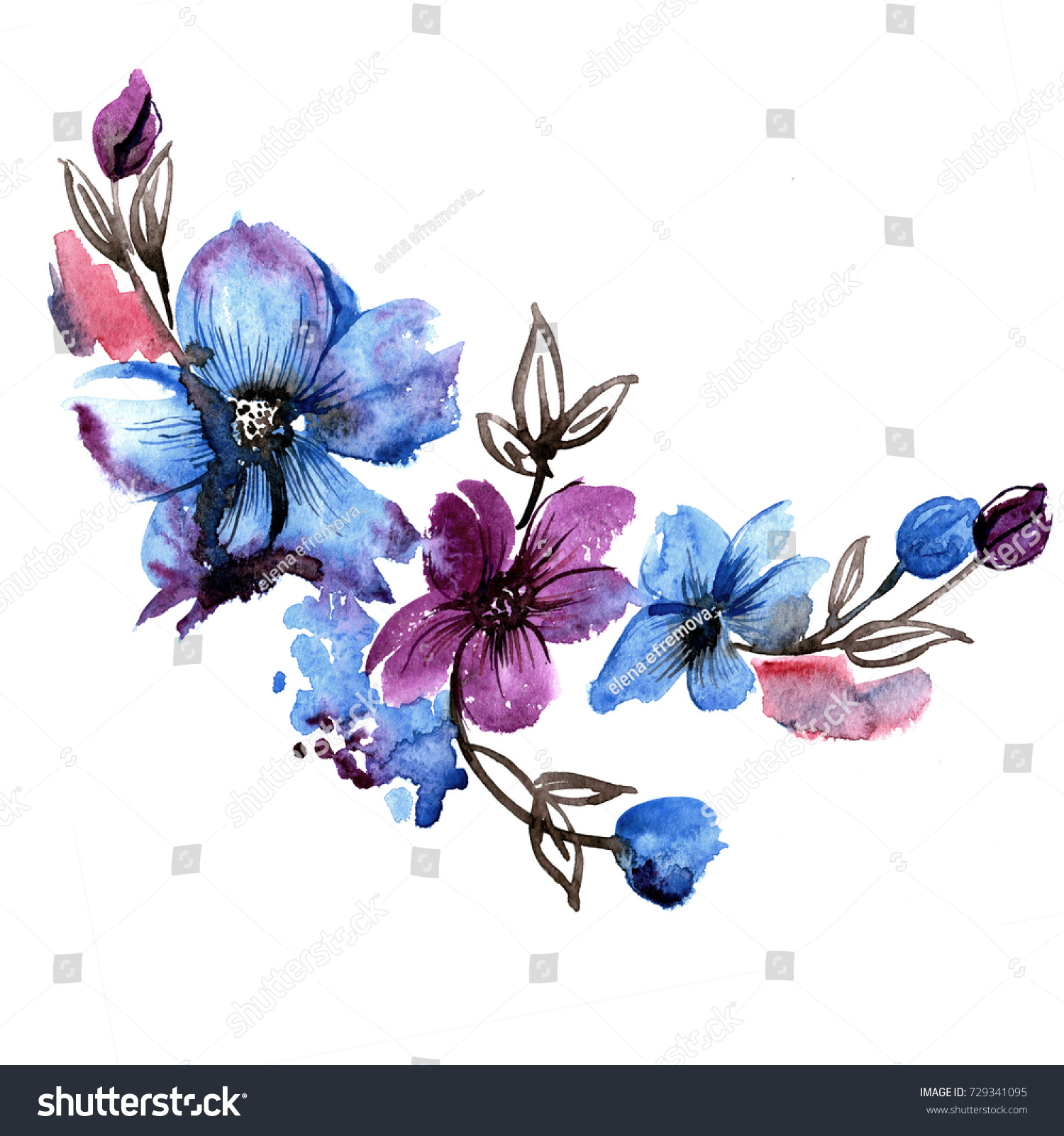 Cute Watercolor Hand Painted Blue Flowers Stock Illustration