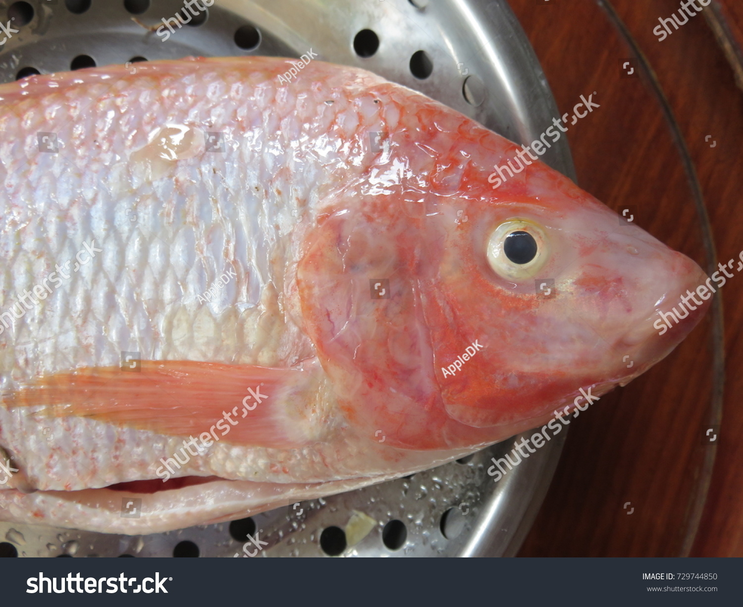 Fresh Ruby Fish Red Color Clear Stock Photo (Royalty Free) 729744850 ...
