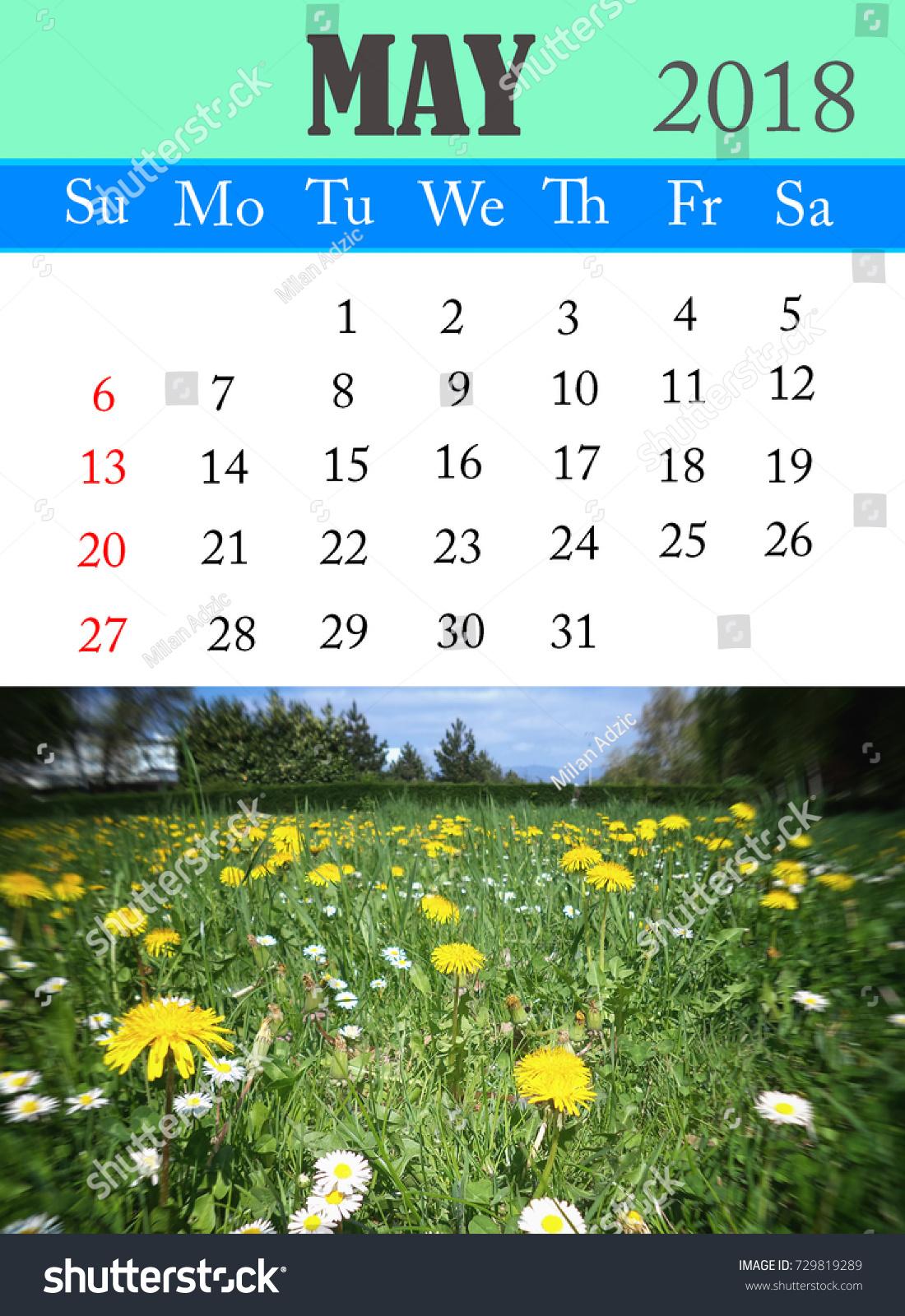 Calendar May 2018 Photo Spring Flowers Stock Illustration 729819289