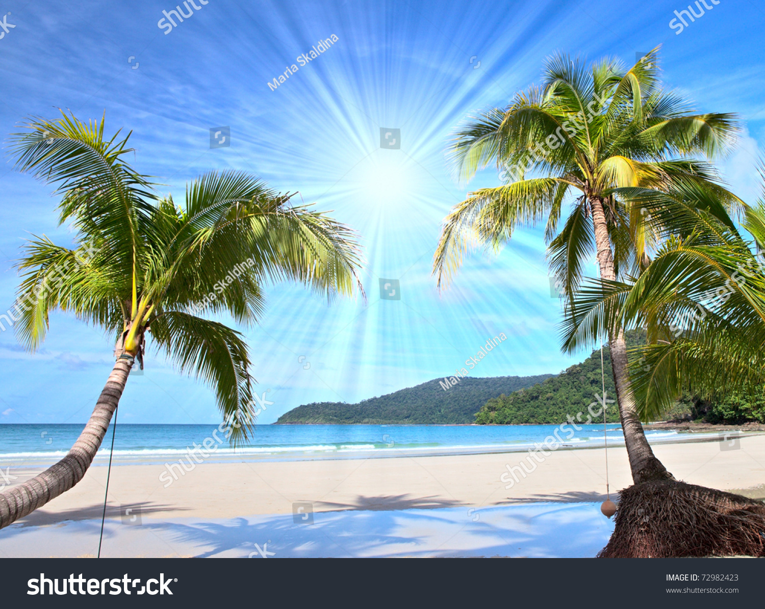 Shining Sun On Nice Beach With Palm Trees Stock Photo