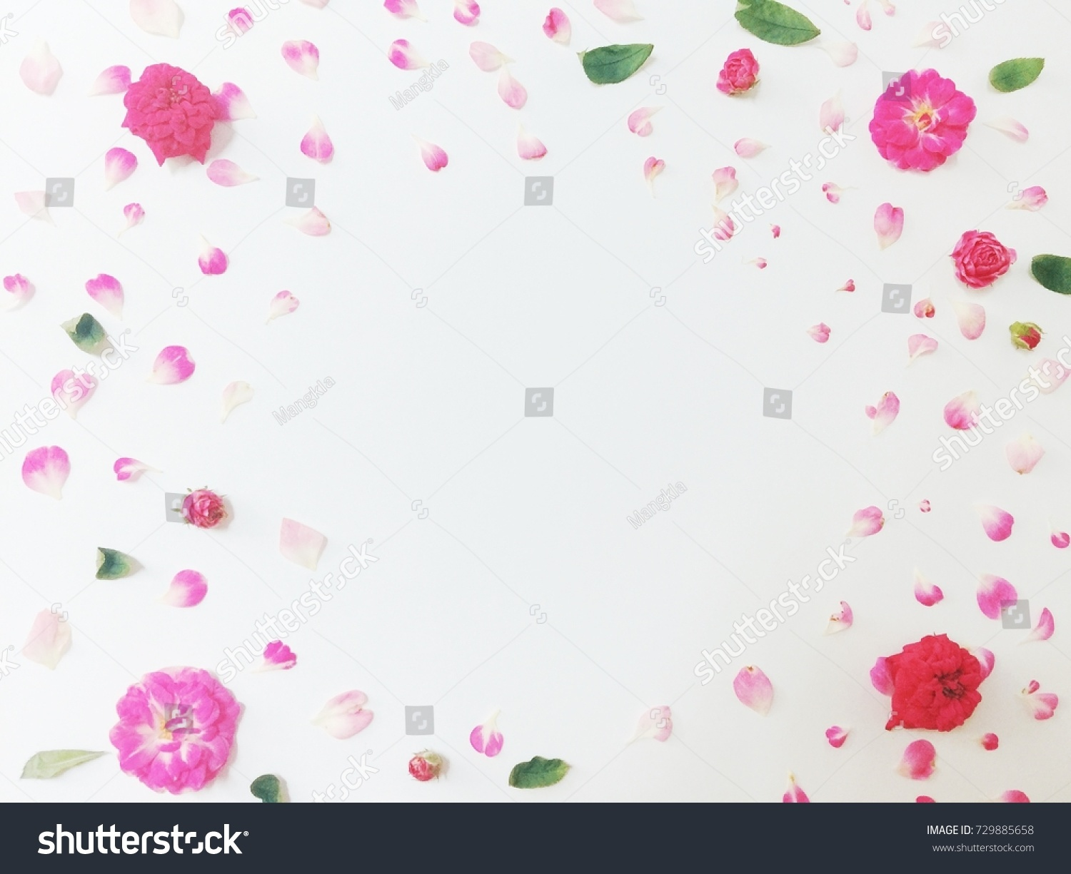 Pretty pink flower background decorative background space for id 729885658 mightylinksfo