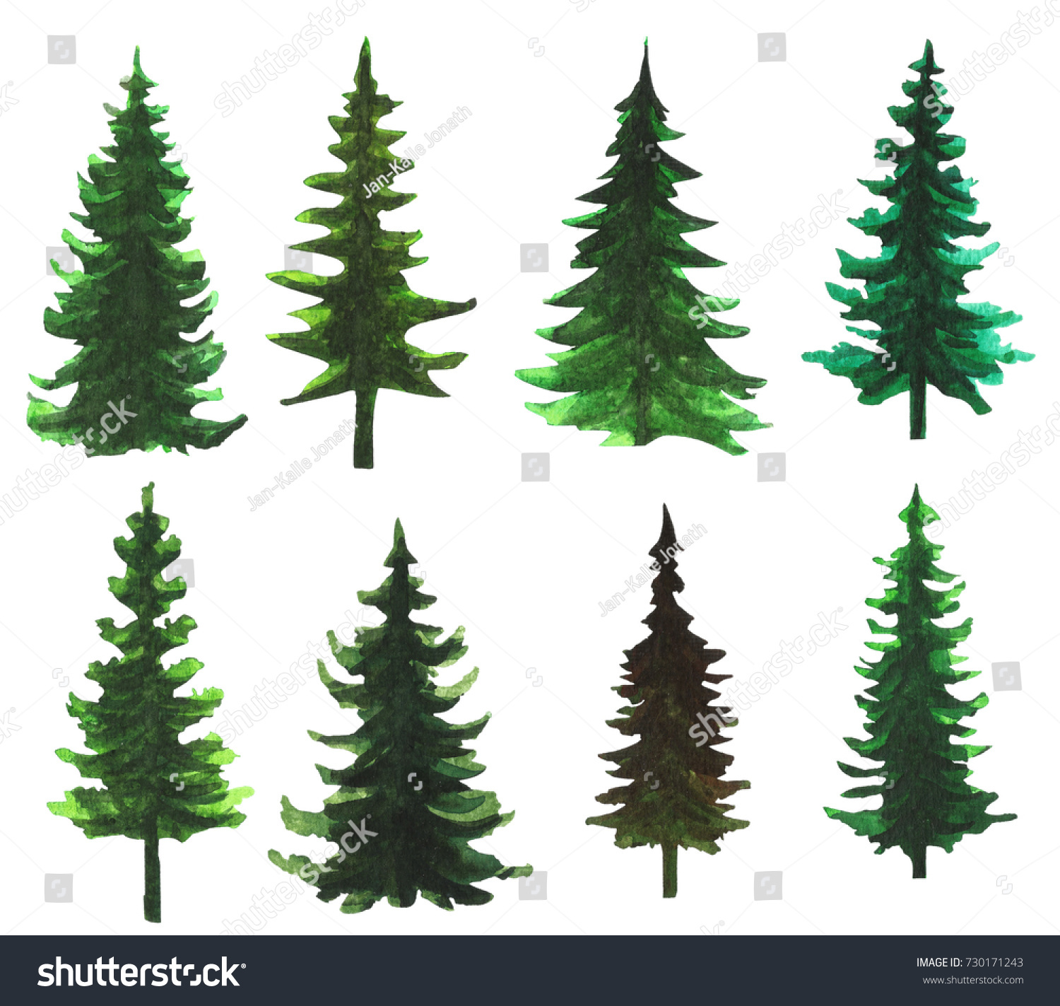 Set 8 Hand Painted Watercolor Trees Stock Illustration 730171243