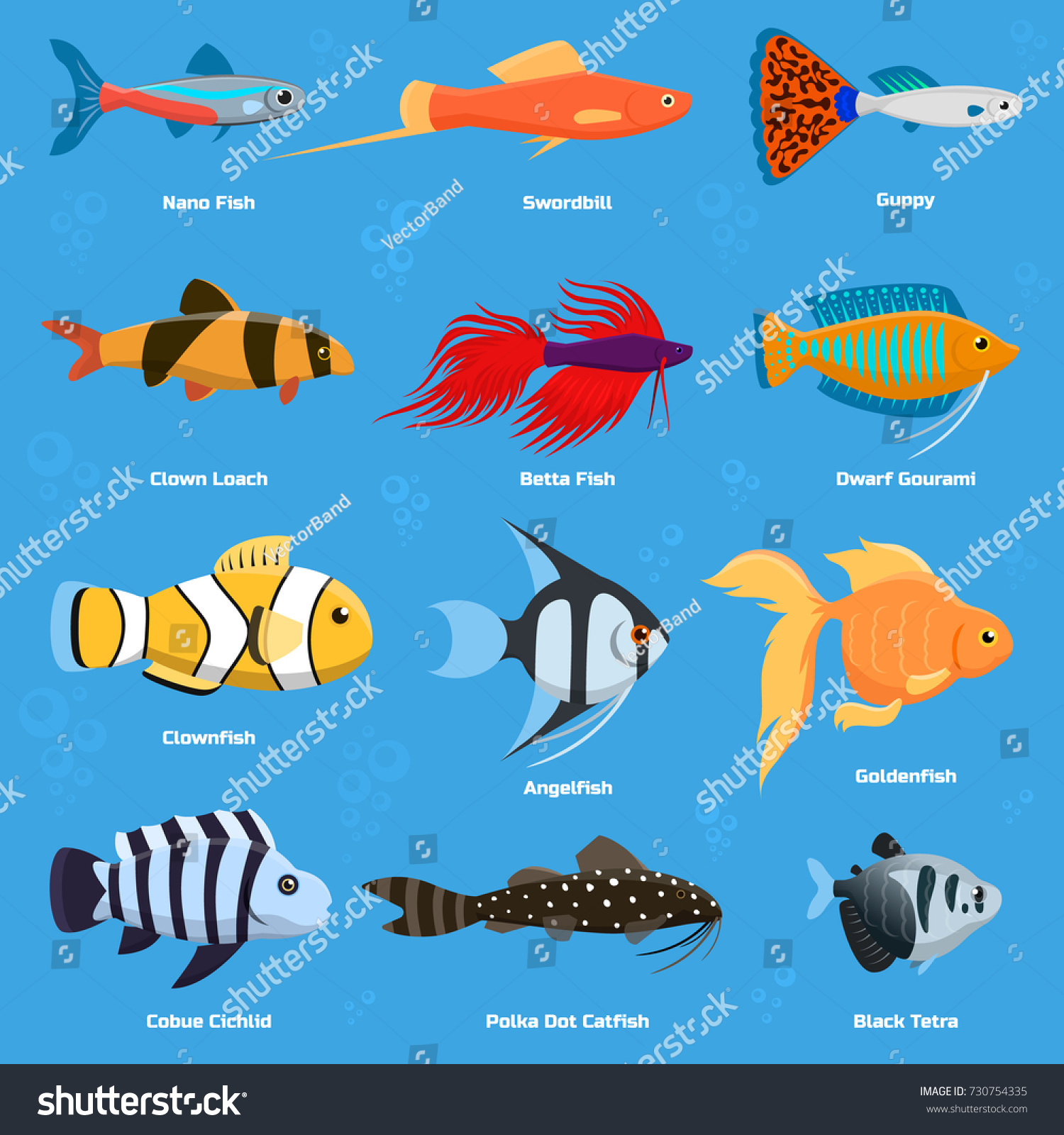 Tropical fish chart images galleries for Names for pet fish