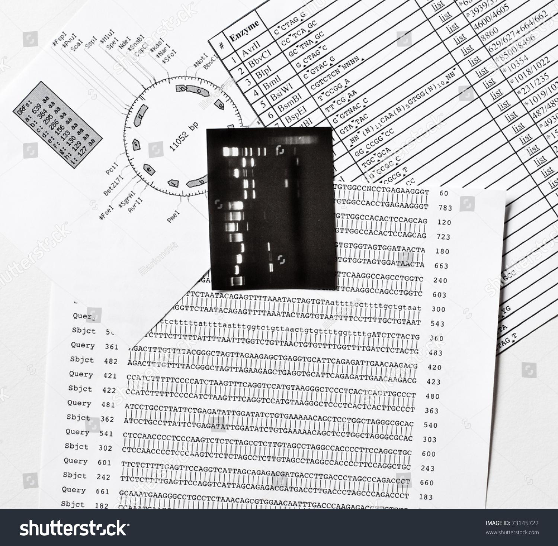 ebook The Ultimate Quotable Einstein