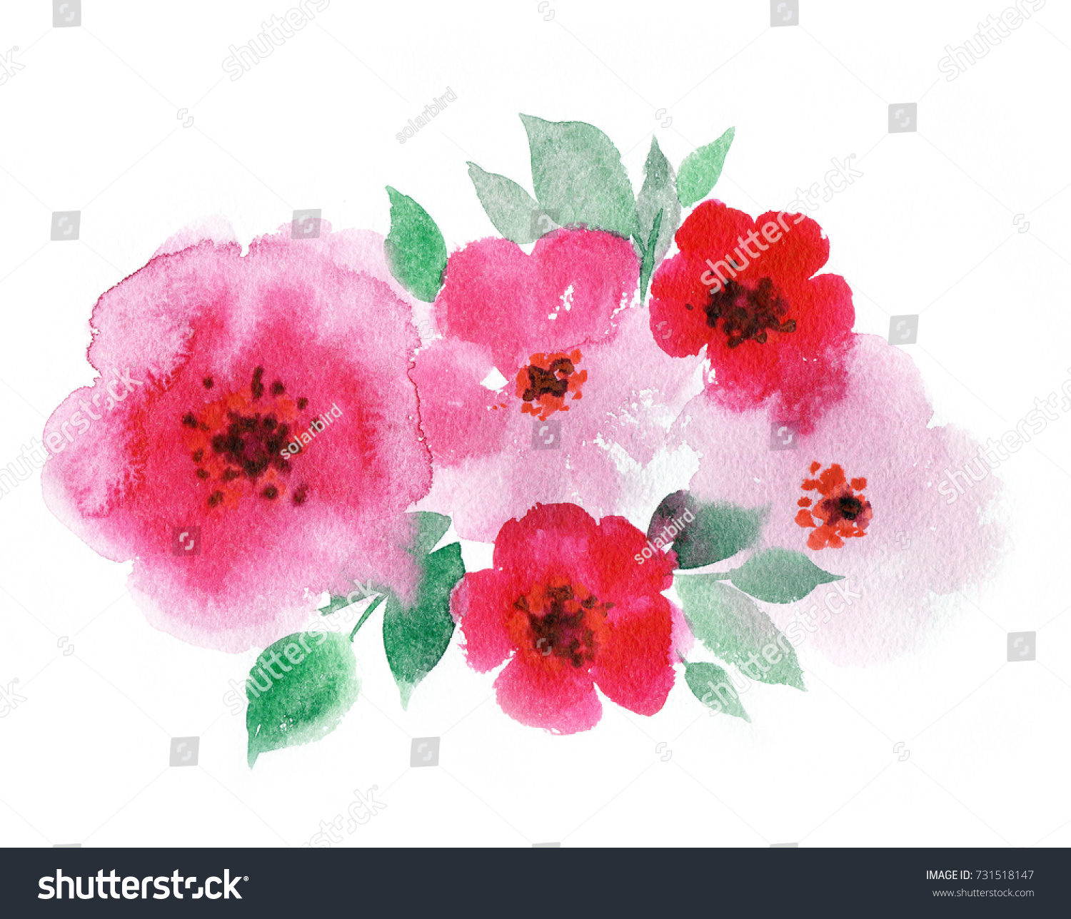 Pink Summer Flowers In Bright Colors Watercolor Botanical