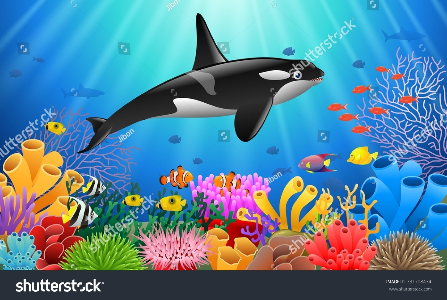 cartoon killer whale coral reef underwater stock vector royalty