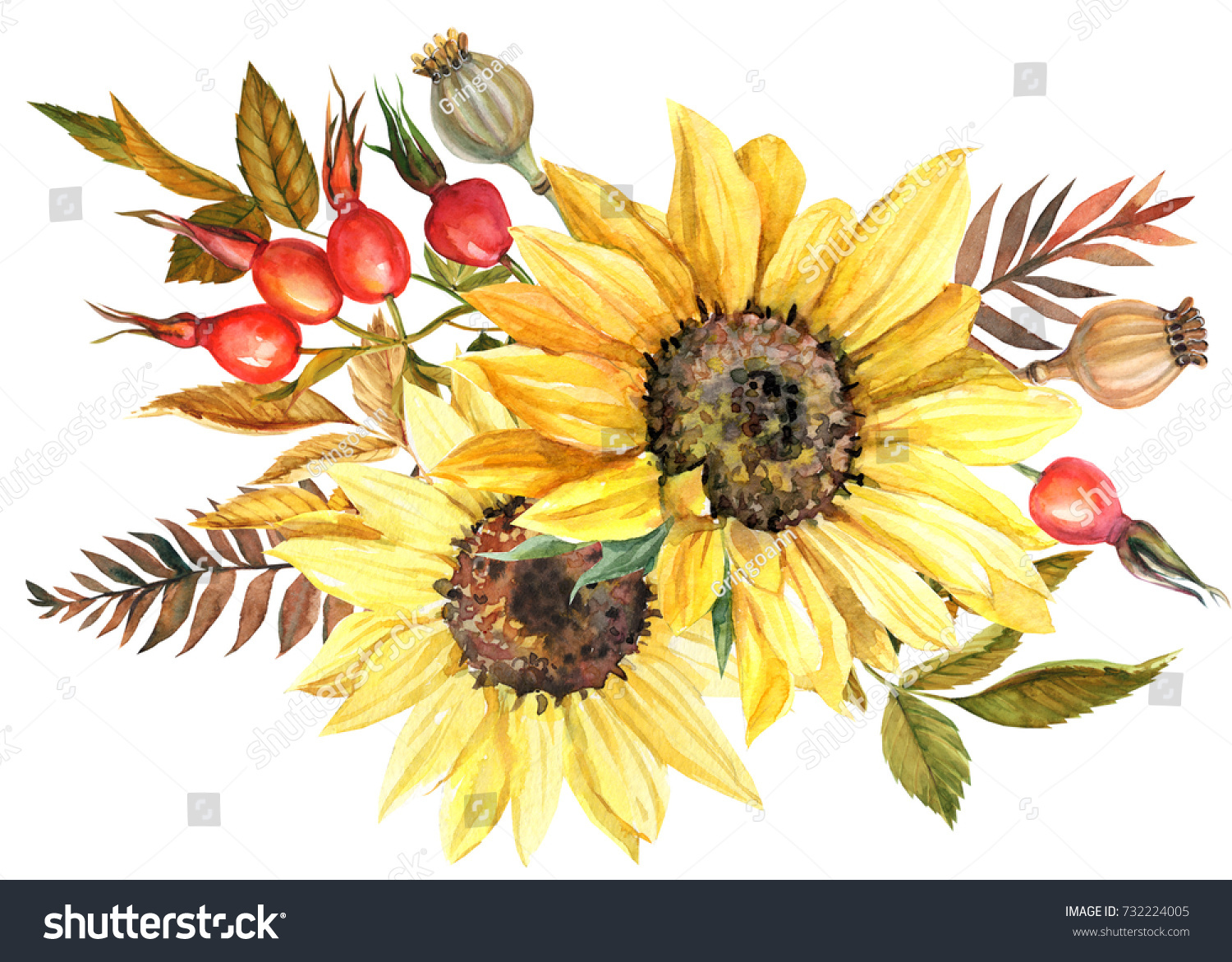 Watercolor Drawing Autumn Bouquet Sunflowers Poppy Stock Illustration 732224005