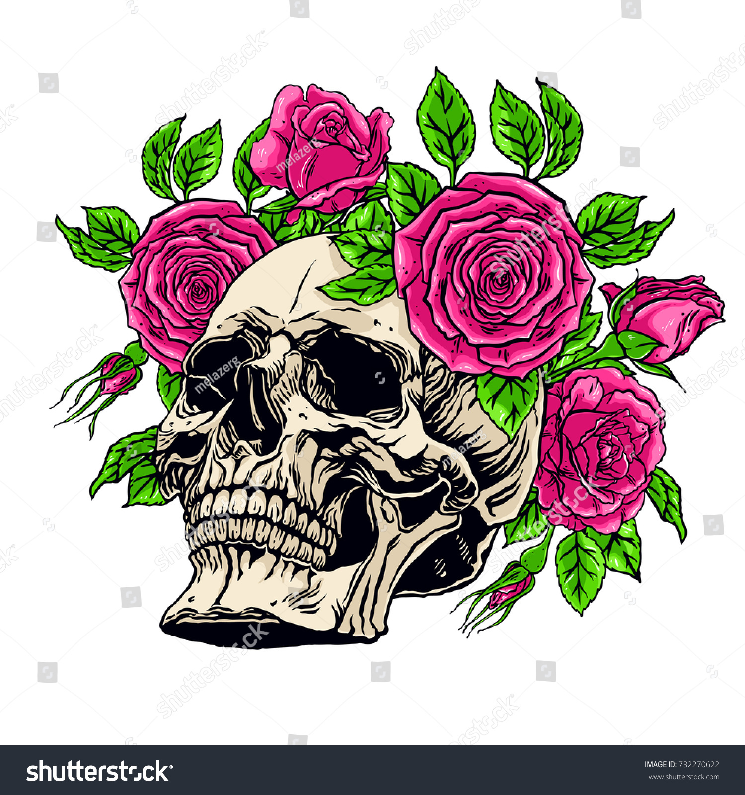 Hand Drawn Illustration Anatomy Human Skull Stock Vector Royalty
