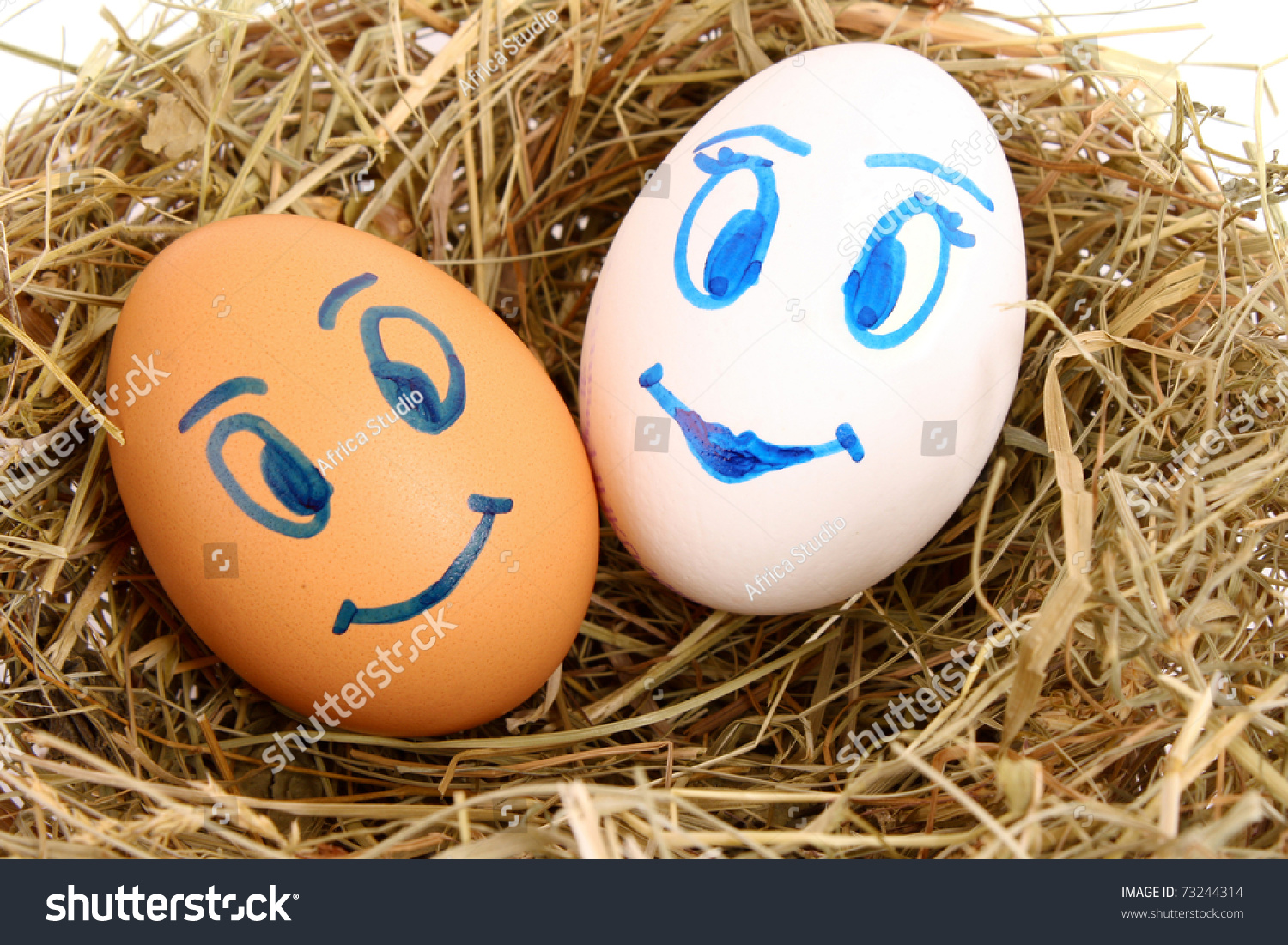 Couple Hens Eggs Faces Grassy Nest Stock Photo Royalty Free 73244314