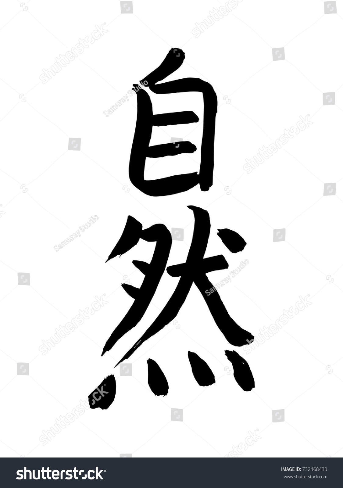 Hand Drawn Chinese Hieroglyph Translates Nature Stock Vector