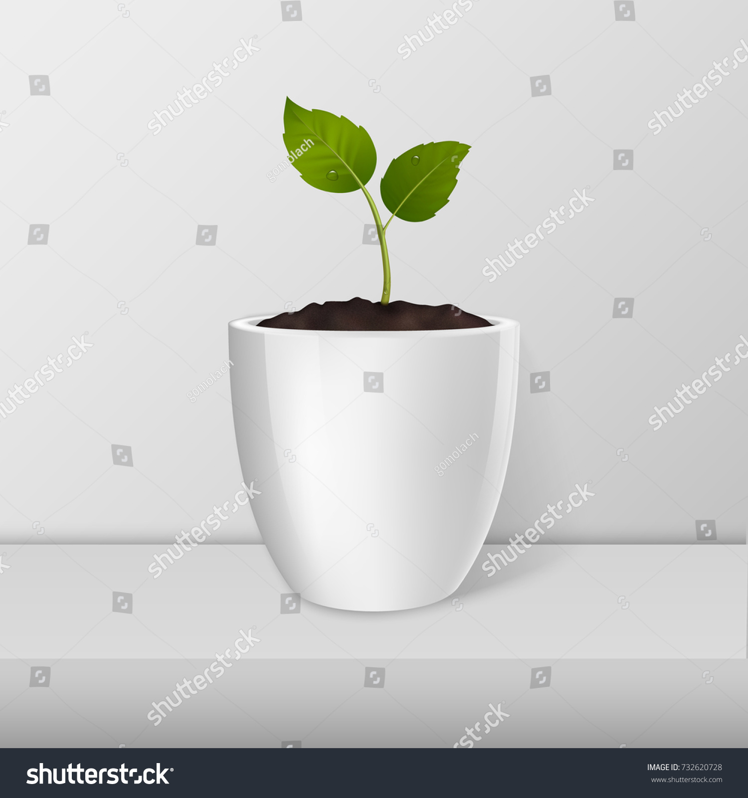 Flower Pot Template | Ecology Concept Vector Sprout White Flowerpot Stock Vector Royalty