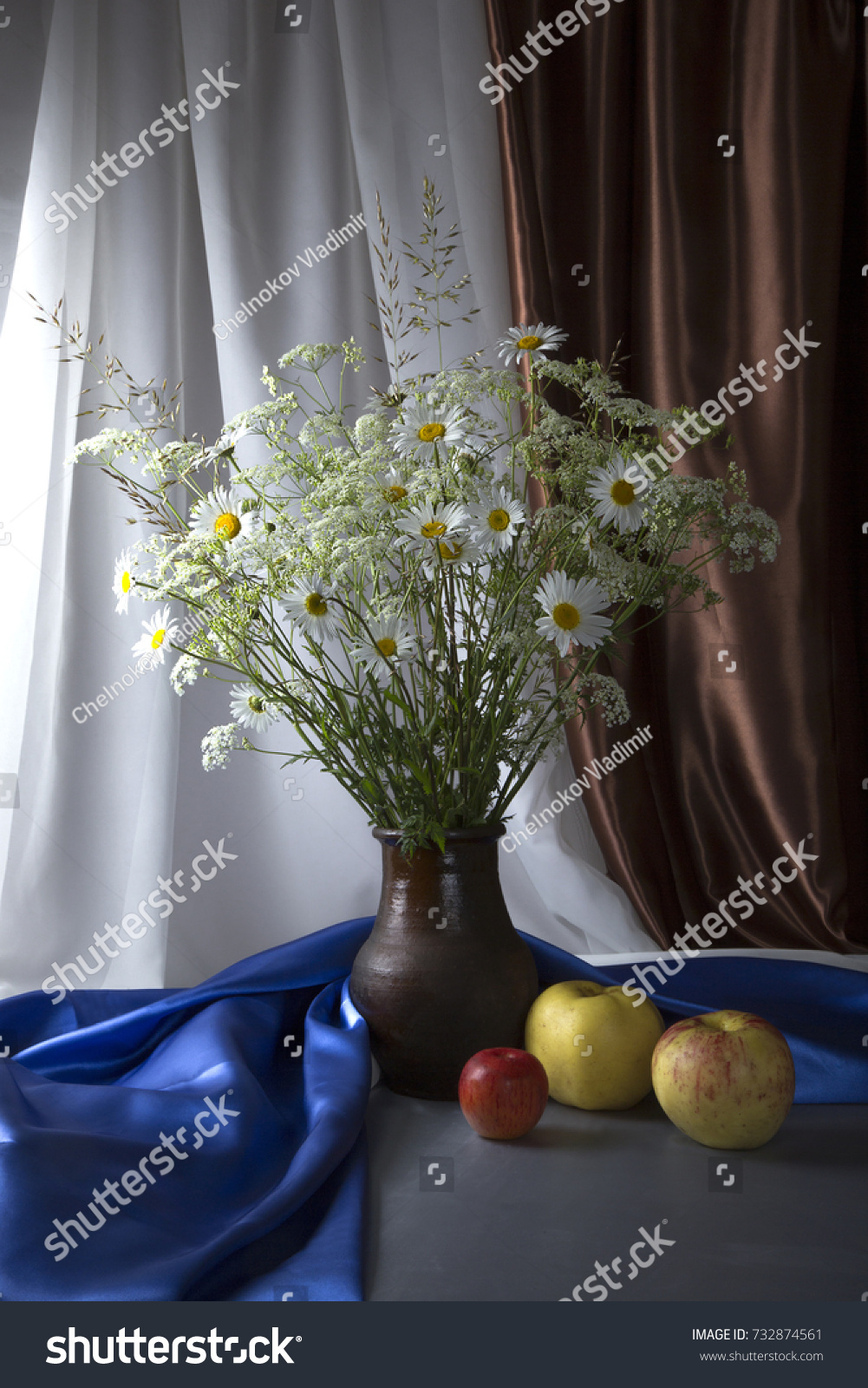 Beautiful Still Life Bouquet Wild Flowers Stock Photo Royalty Free