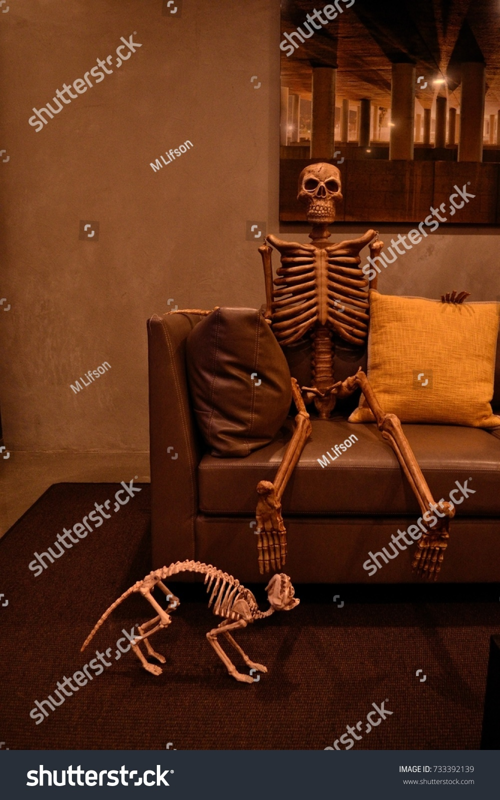 skeleton sits dog funny halloween decorations stock photo (edit now