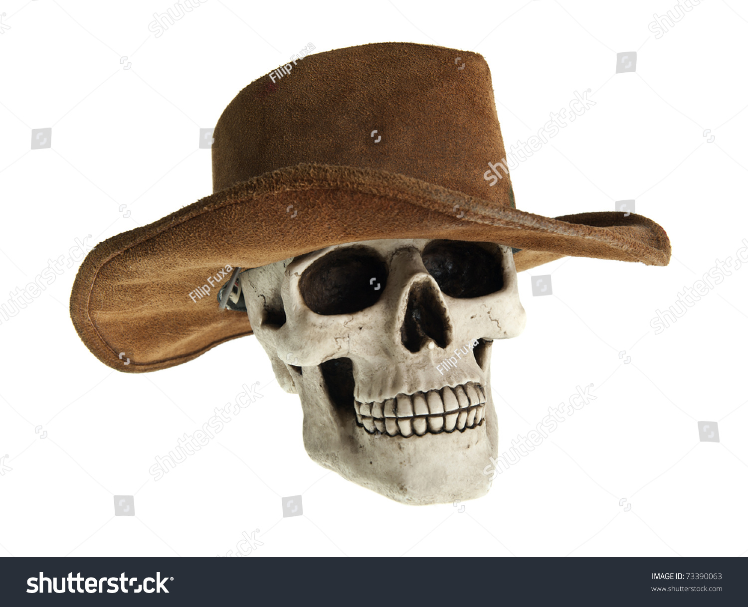 3be3adeba833a Scary human skull is wearing cowboy hat
