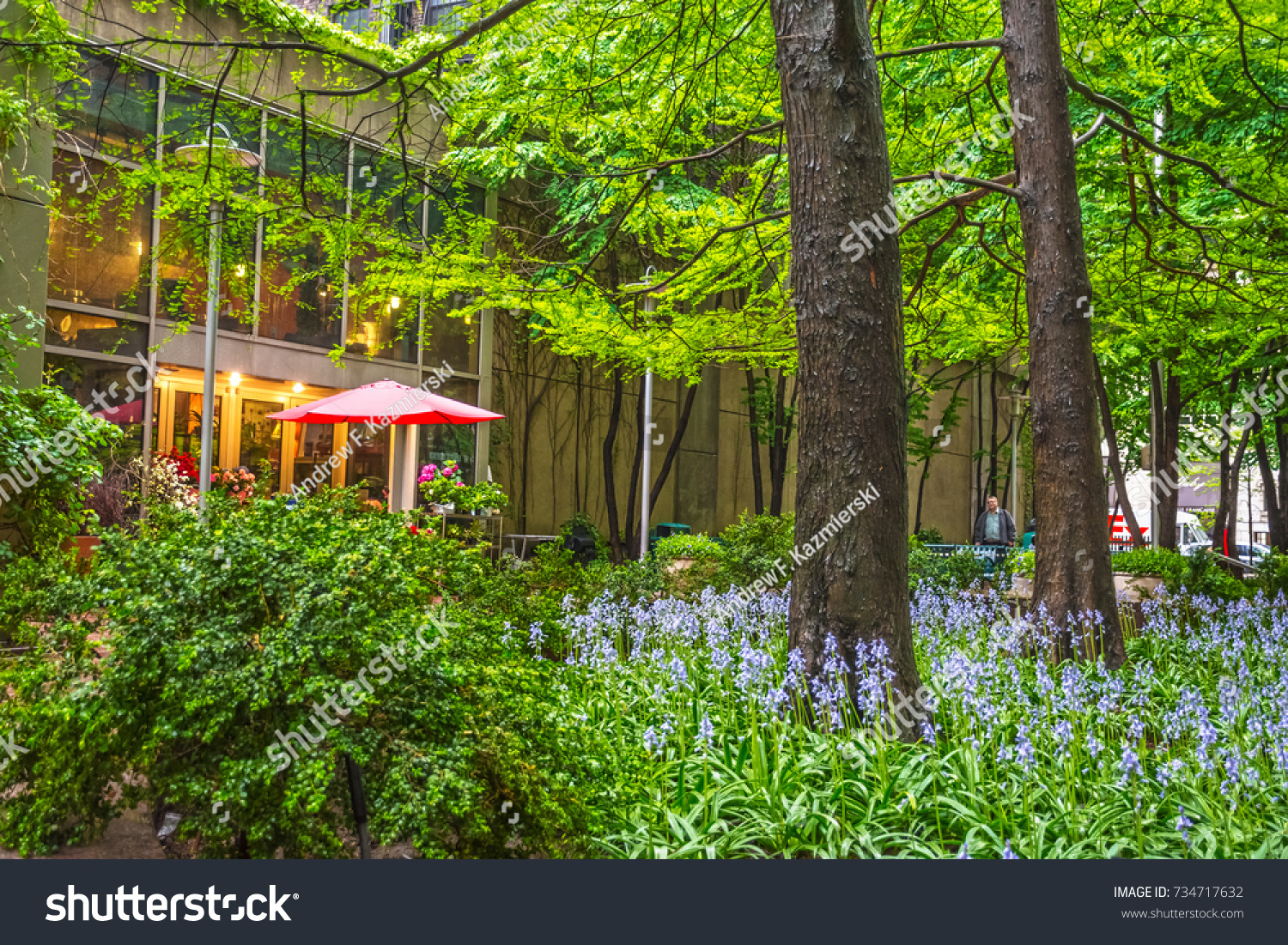 New Yorkmay 5 Spring Flowers Among Stock Photo Edit Now 734717632
