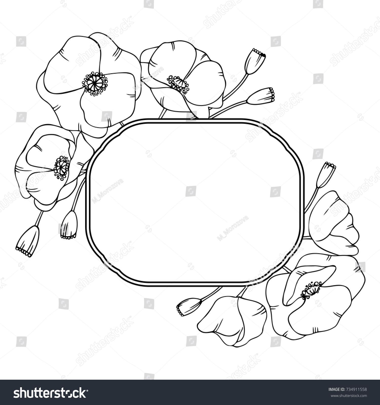 white black hand drawn poppy flowers stock vector 734911558