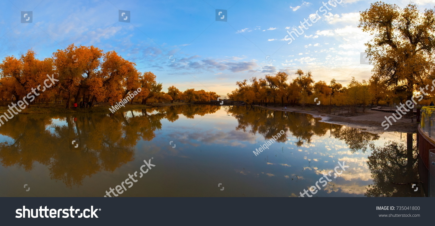 Fall Reflections on the Constitution Gardens Pond - Washington D.C. ...