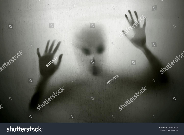 Alien #735135055