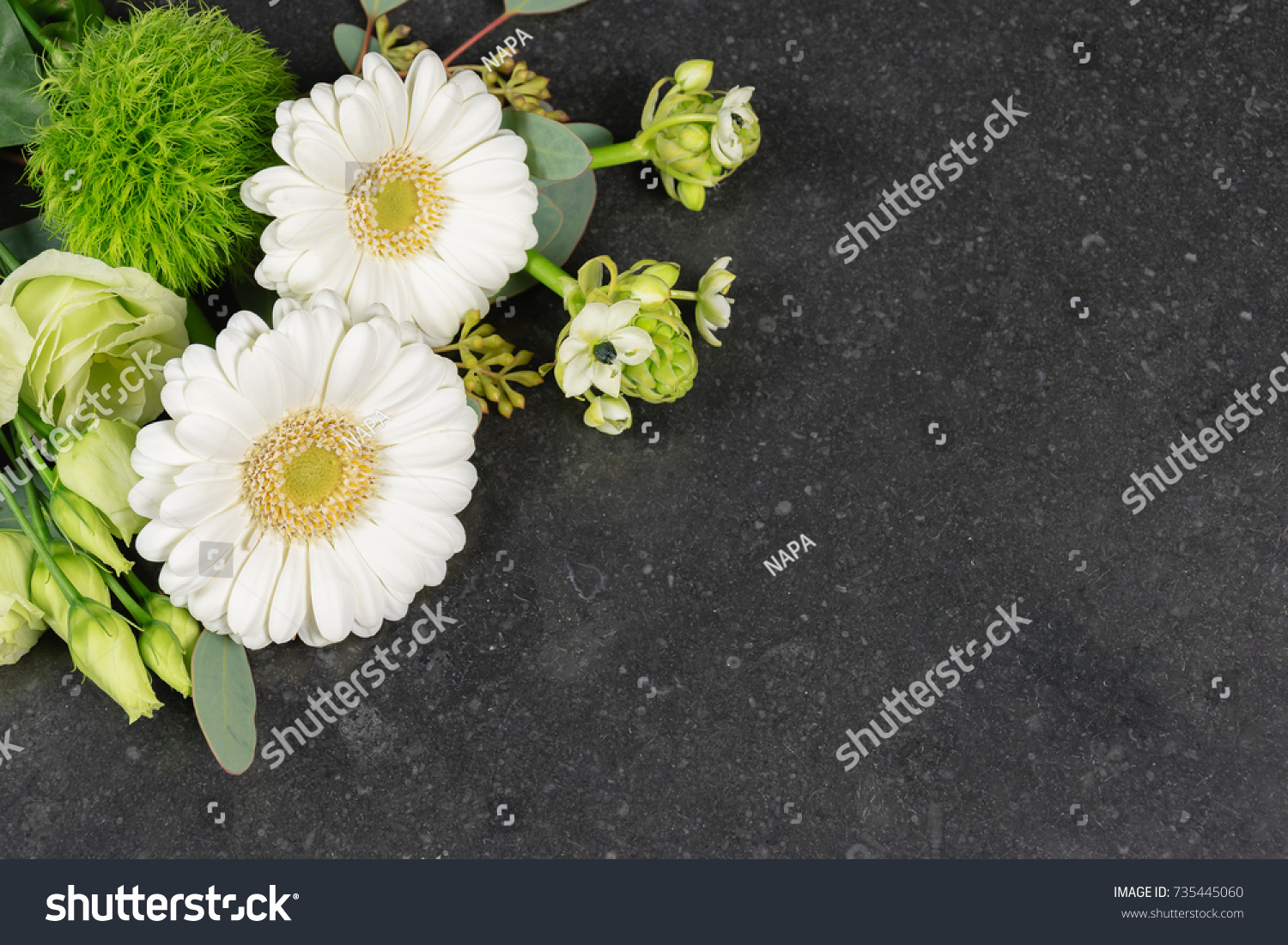 White Flowers Background Top View White Stock Photo Edit Now