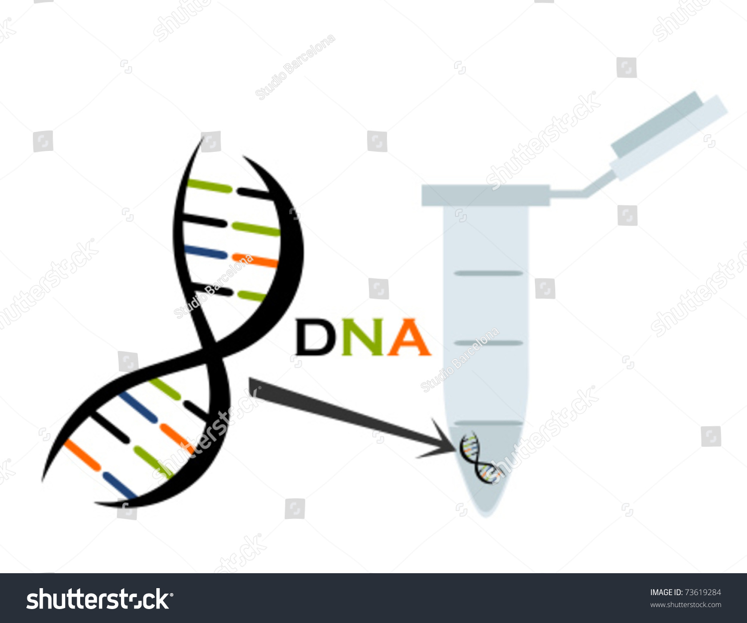 molecular biology quiz An introduction to molecular biology/quiz time from wikibooks, open books for an open world molecular biology jump to navigation jump to search.
