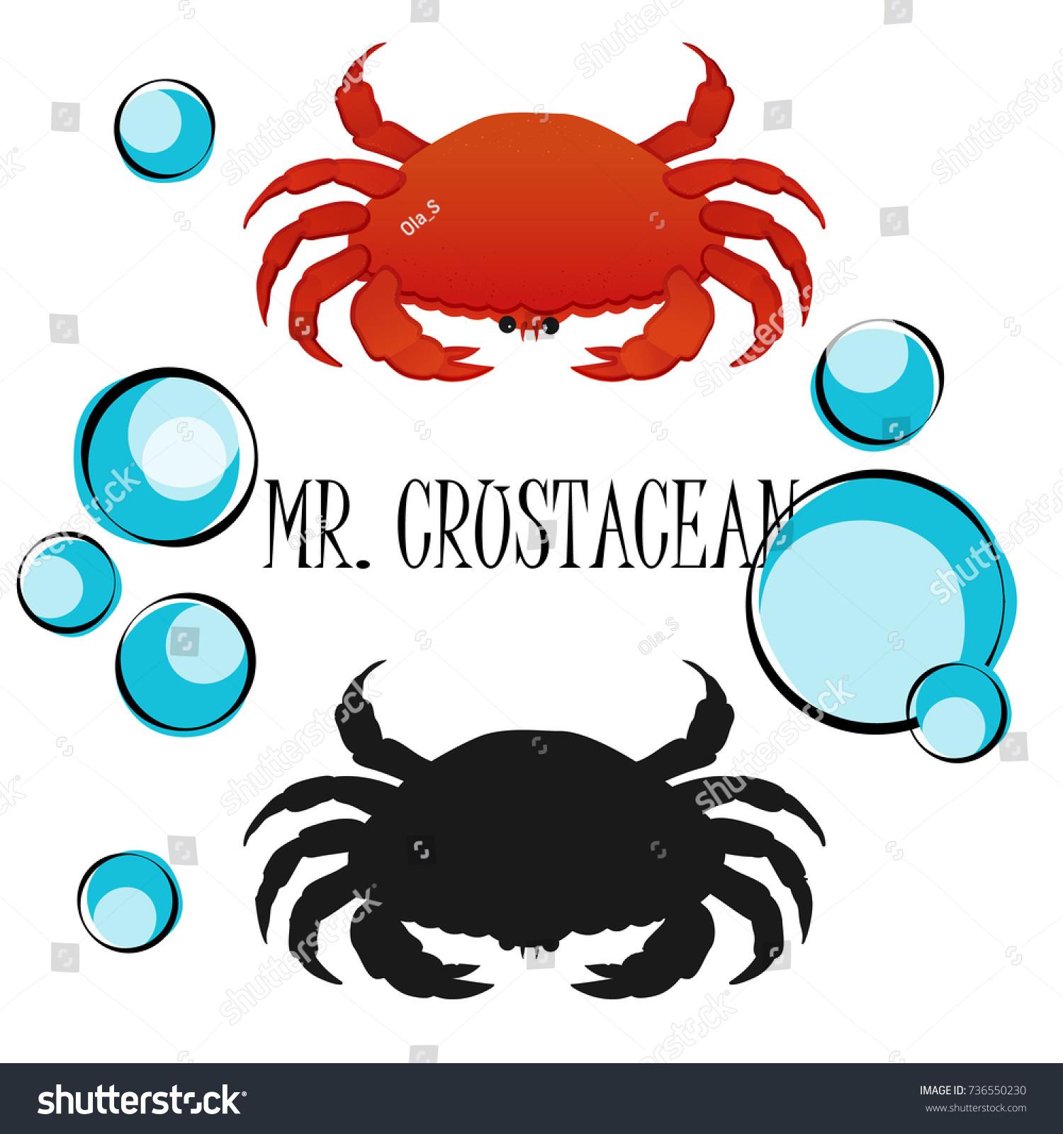Crab clipart. Free download transparent .PNG   Creazilla   1600x1500