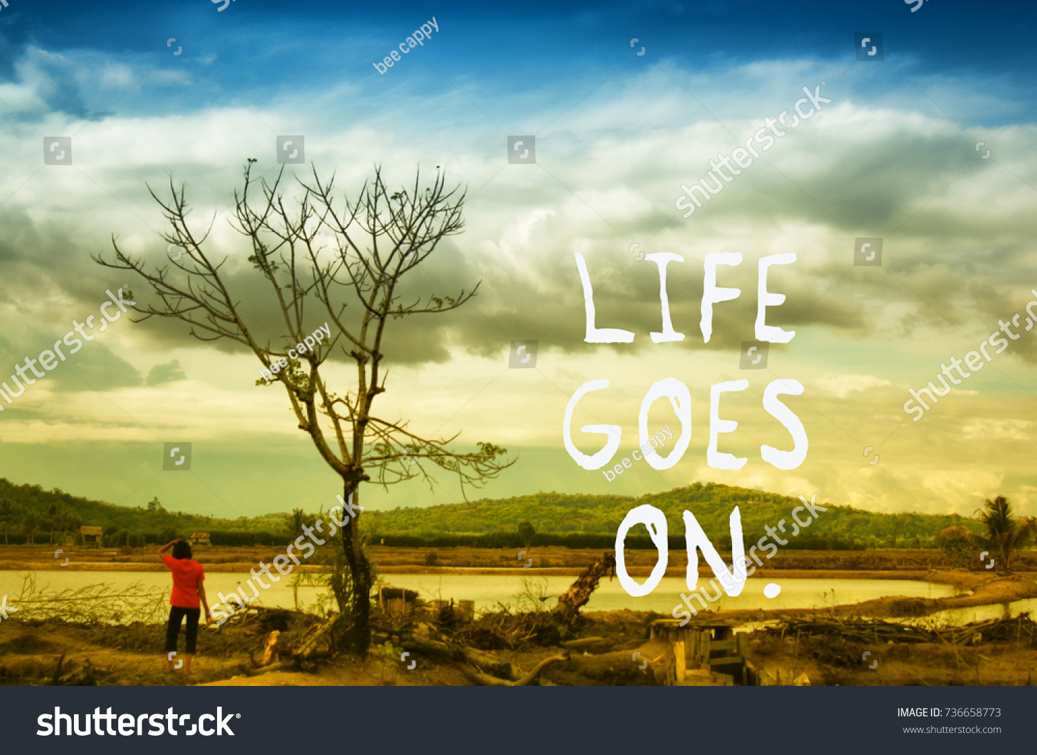Natural Life Quotes Life Quotes Life Goes On Vintage Stock Photo 736658773  Shutterstock
