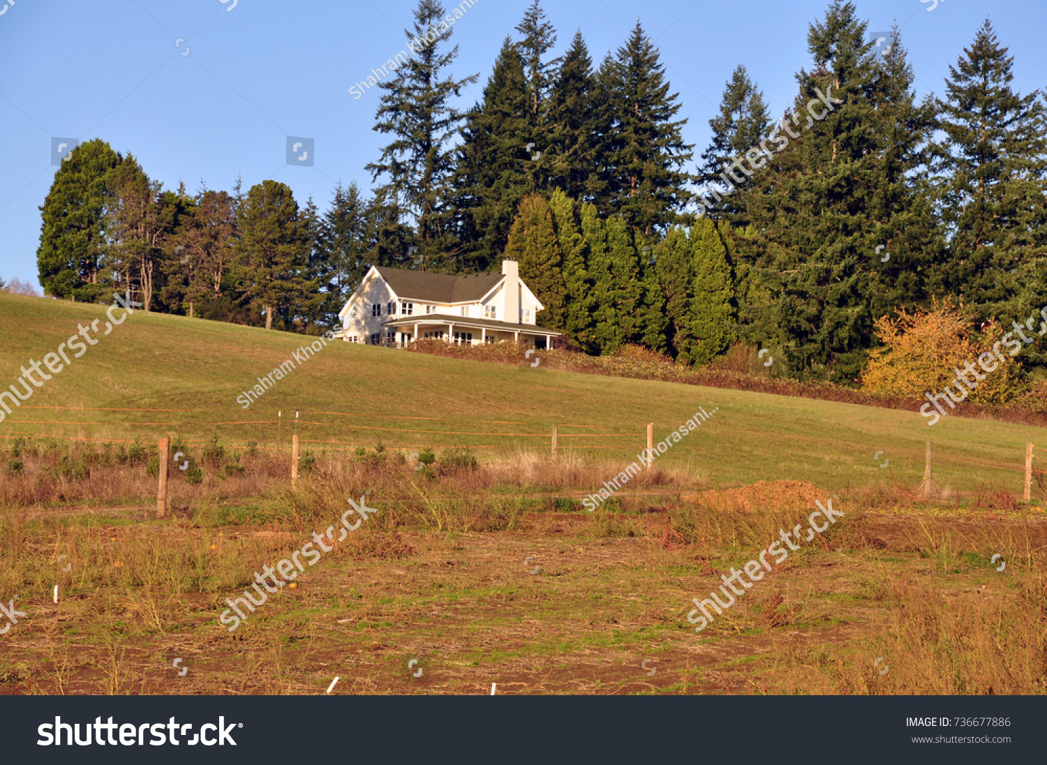 A Beautiful Scene Of Traditional American Farmhouse And Surrounded Landscape Grass Fields On