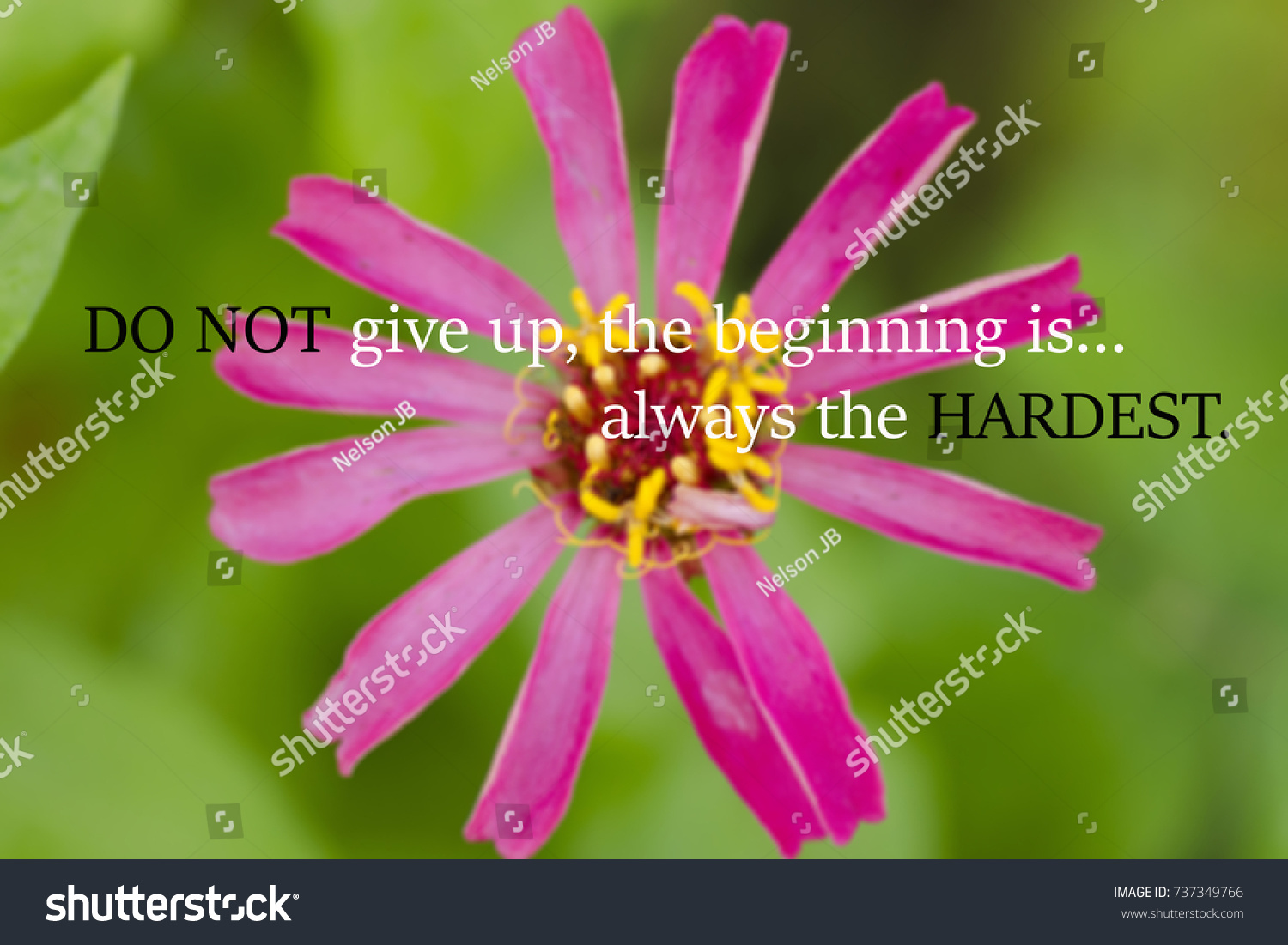 Motivational quotes do not give up stock photo edit now 737349766 motivational quotes of do not give up the beginning is always the hardest izmirmasajfo