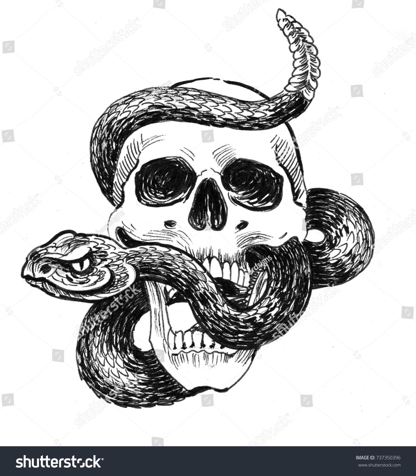 Skull And Rattle Snake