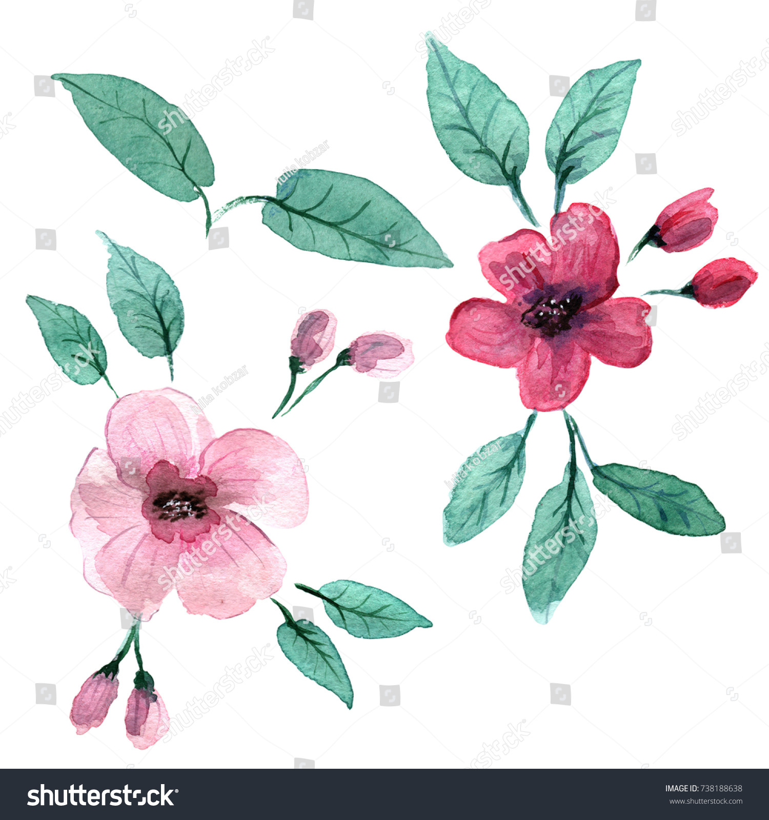 Delicate Pink Flowers Style Watercolors Stock Illustration 738188638